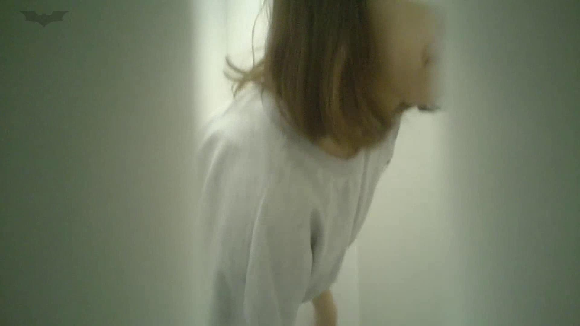 ハメ撮り 有名大学女性洗面所 vol.40 ??おまじない的な動きをする子がいます。 怪盗ジョーカー