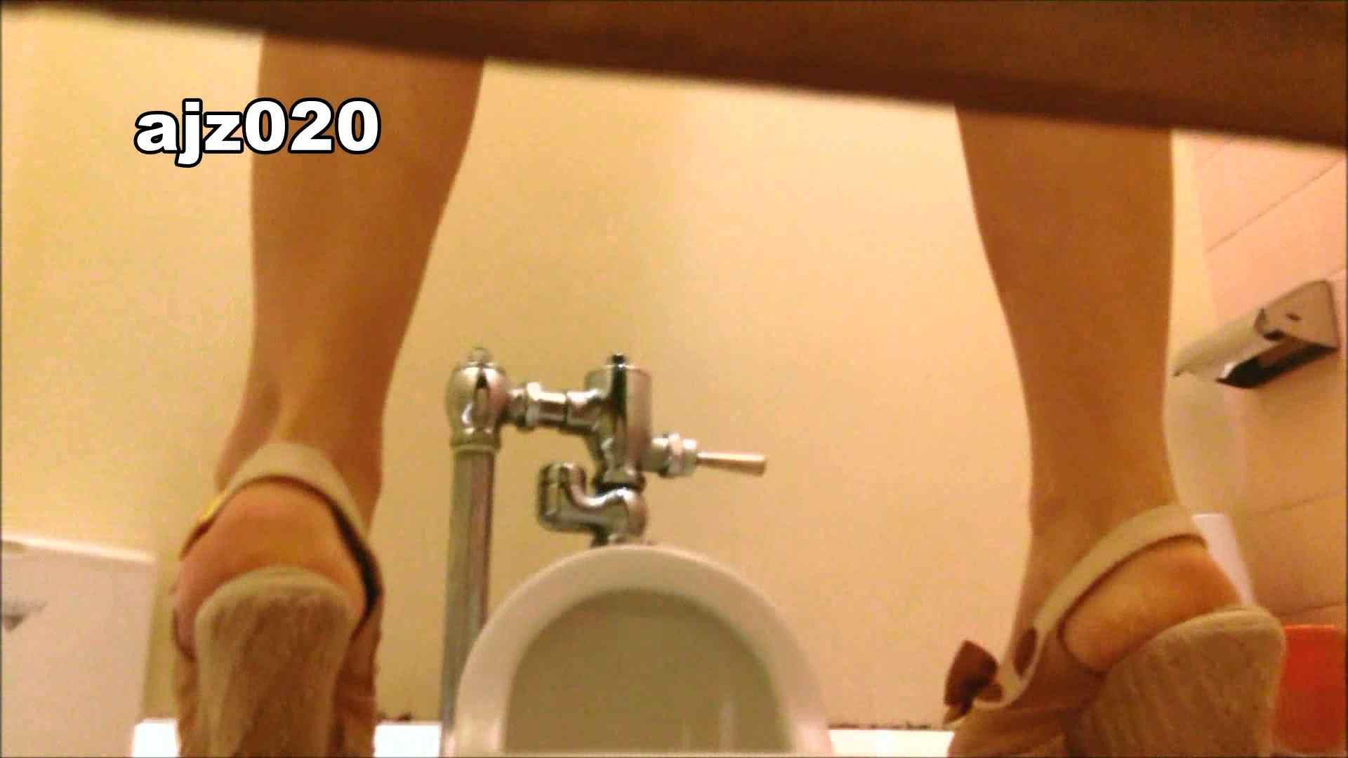 ハメ撮り|某有名大学女性洗面所 vol.20|怪盗ジョーカー