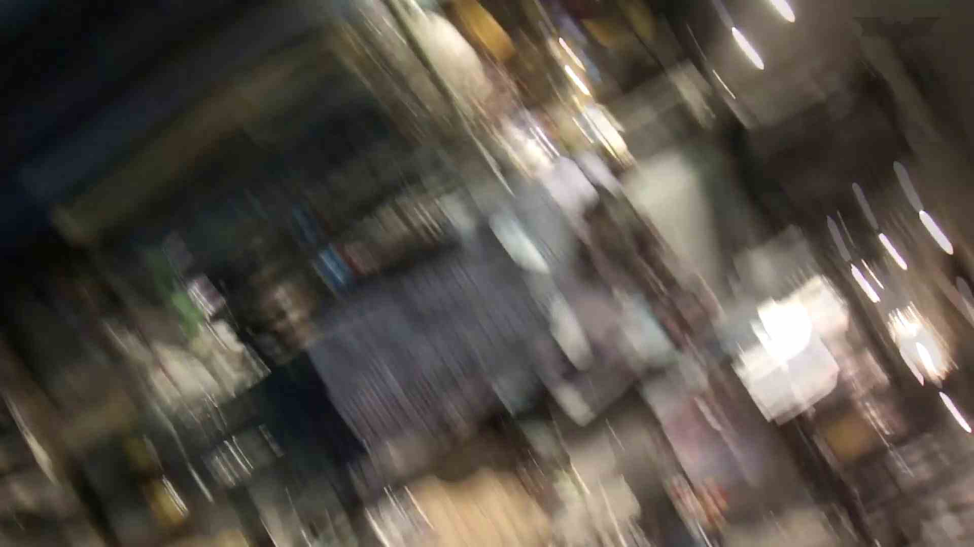 ハメ撮り|ギャルのツルピカ潜入盗撮!Vol.15|怪盗ジョーカー