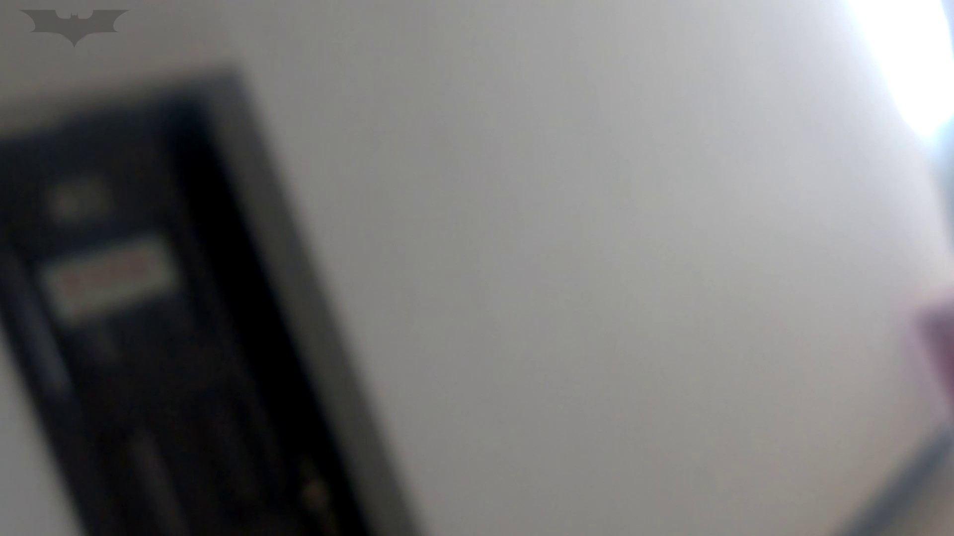 ハメ撮り|JD盗撮 美女の洗面所の秘密 Vol.11|怪盗ジョーカー