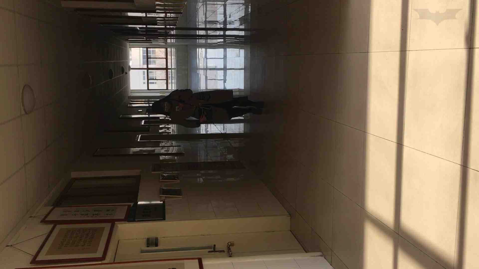 ハメ撮り|芸術大学ガチ潜入盗撮 JD盗撮 美女の洗面所の秘密 Vol.88|怪盗ジョーカー
