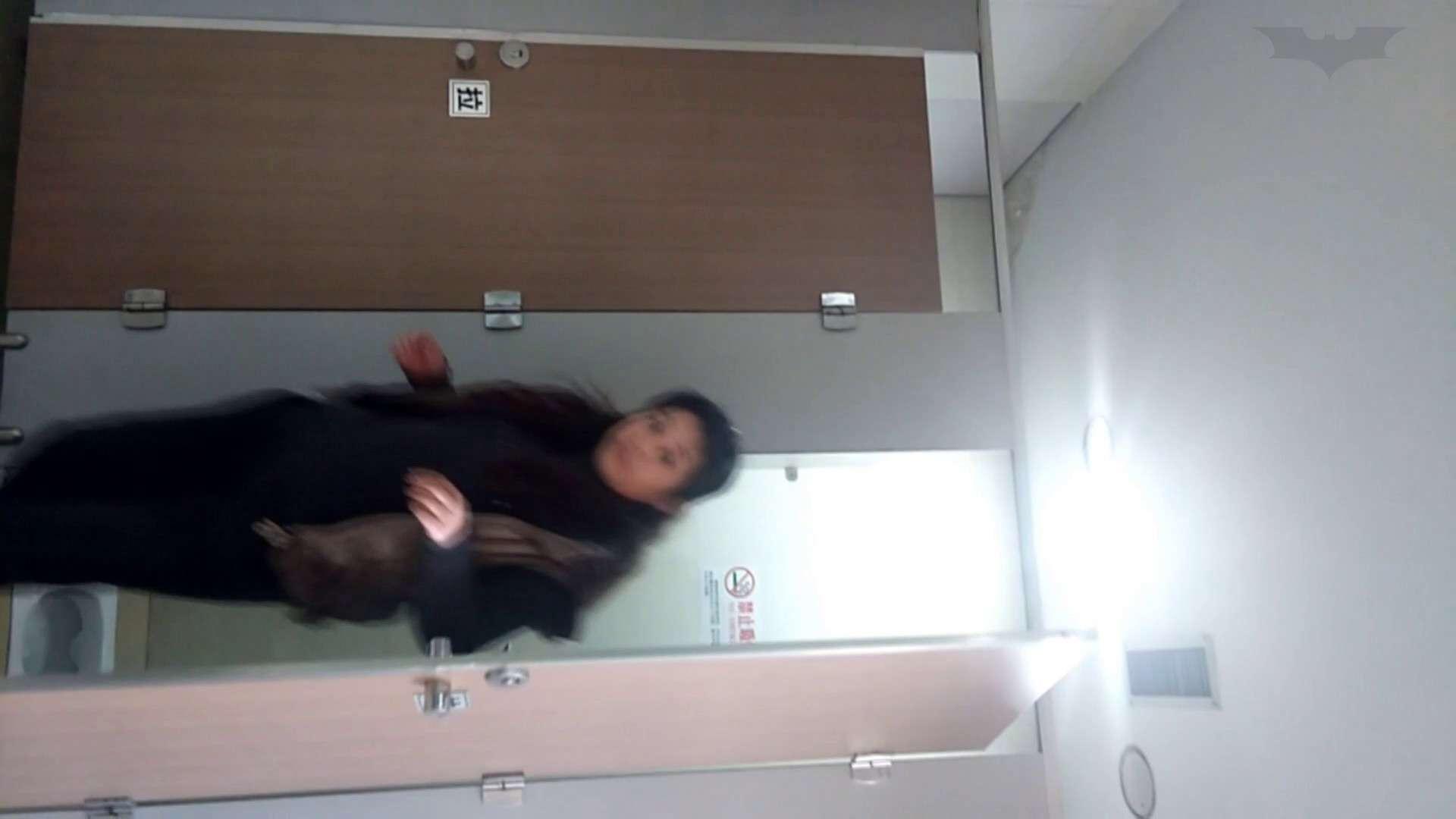 ハメ撮り|芸術大学ガチ潜入盗撮 JD盗撮 美女の洗面所の秘密 Vol.99|怪盗ジョーカー
