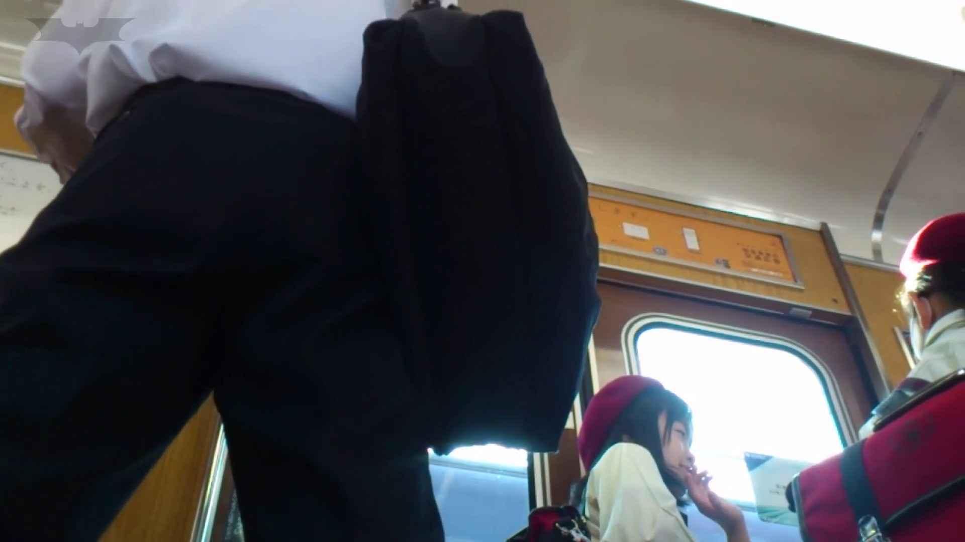 ハメ撮り 期間限定 超炉利盗撮 Vol.04 神キタ~達の炉利パンツを激撮 怪盗ジョーカー