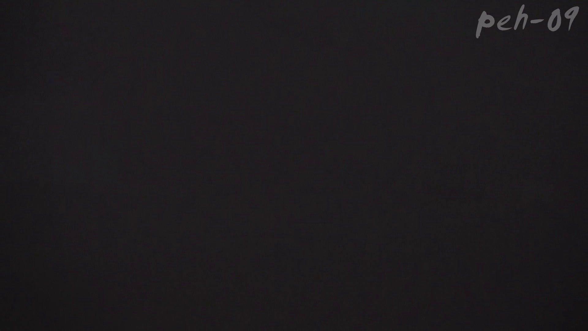ハメ撮り ※100個限定販売 至高下半身盗撮 プレミアム Vol.9 ハイビジョン 怪盗ジョーカー