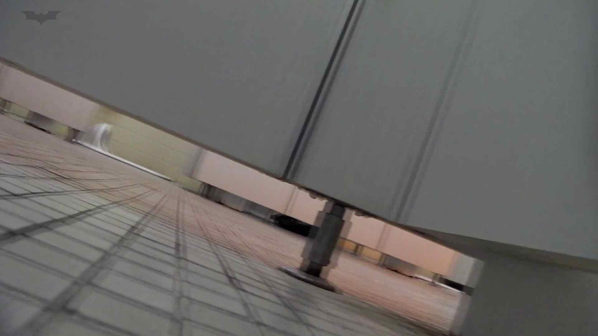 ハメ撮り 第三体育館潜入撮File024 最後の子【2015・17位】 怪盗ジョーカー