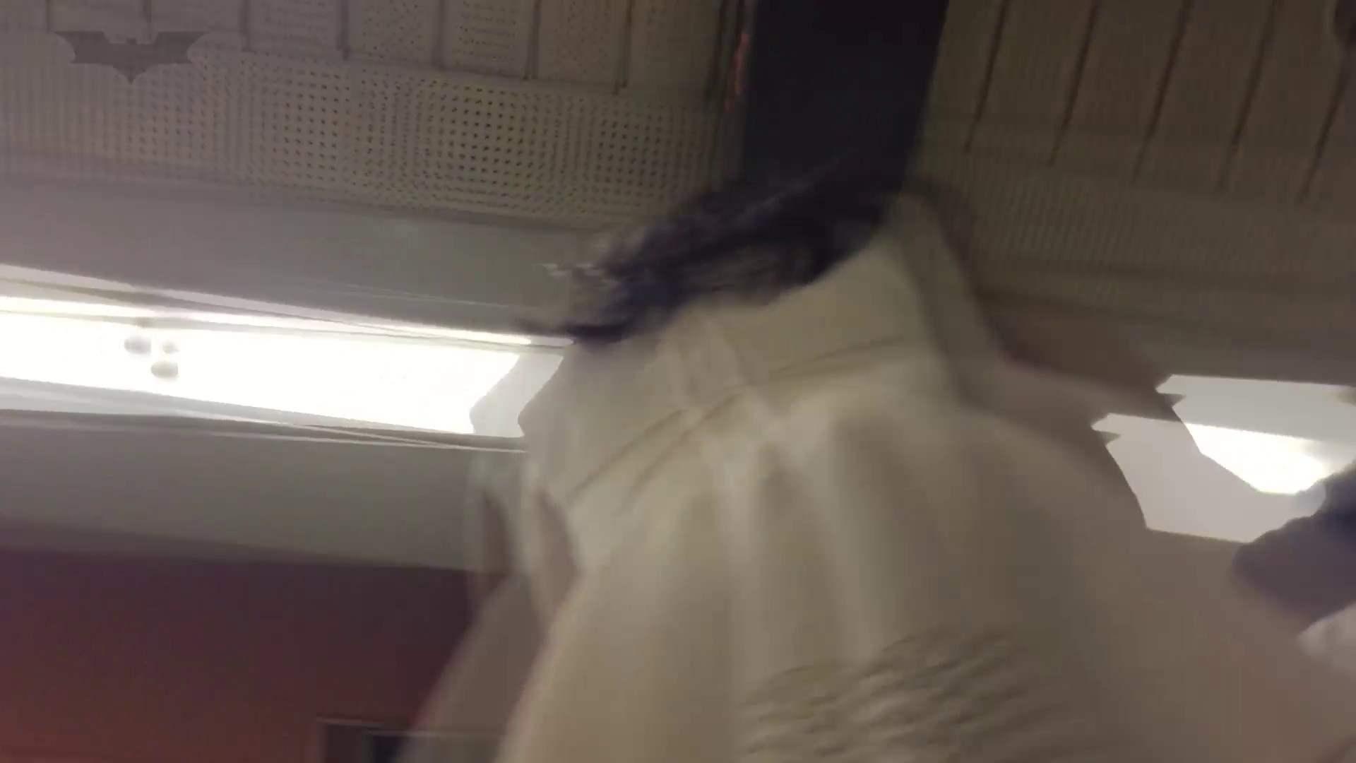 ハメ撮り|盗撮列車 vol.07 白スカートの中は爽やかな…|怪盗ジョーカー