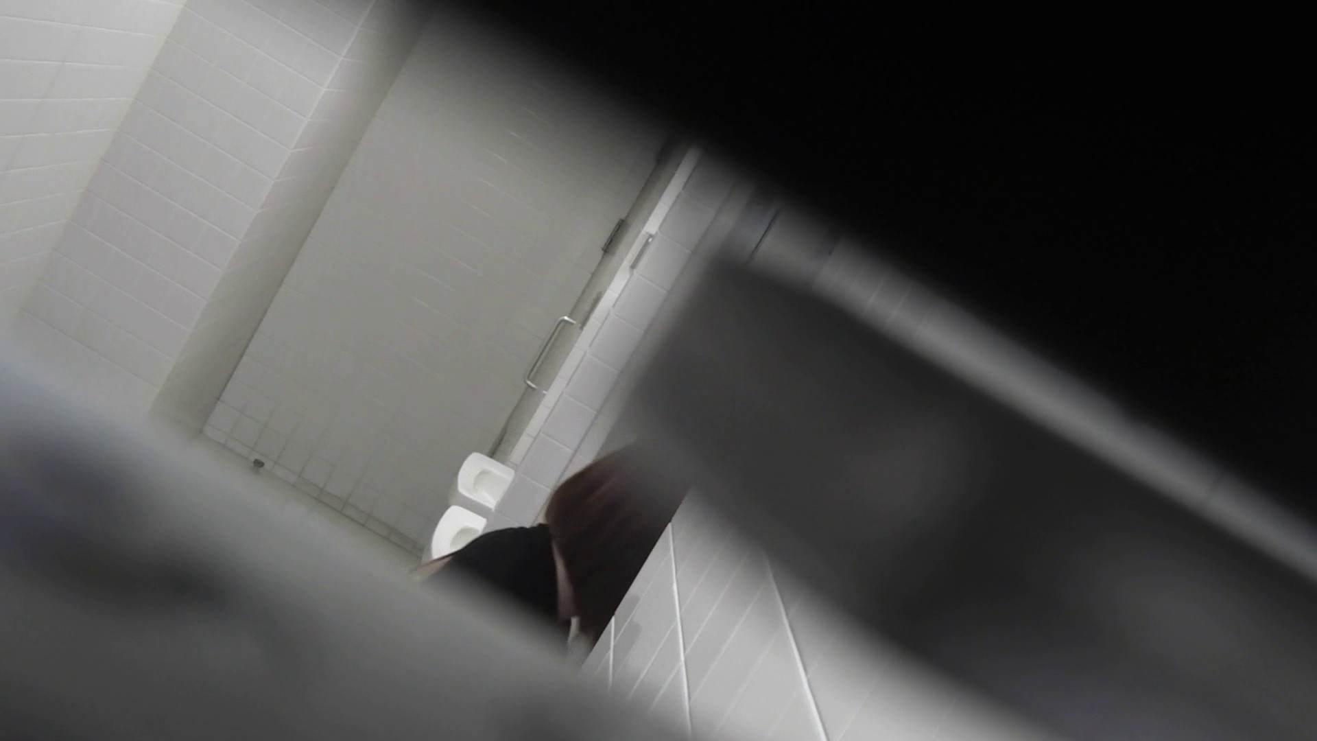 ハメ撮り|お銀さんの「洗面所突入レポート!!」Nol.20 総合編|怪盗ジョーカー
