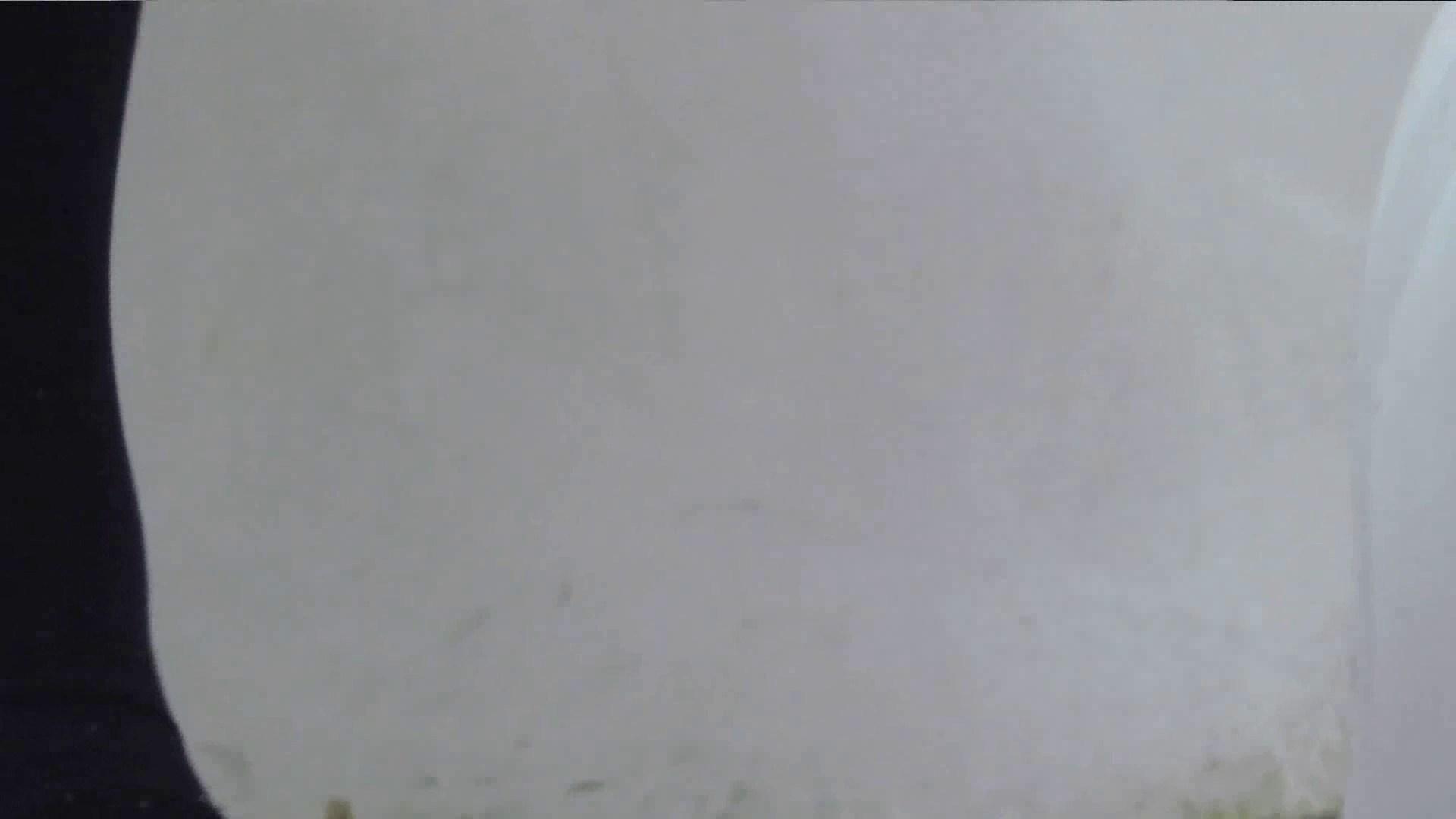 ハメ撮り|【美しき個室な世界】 vol.025 メガネ属性ヾ(´∀`)ノ|怪盗ジョーカー