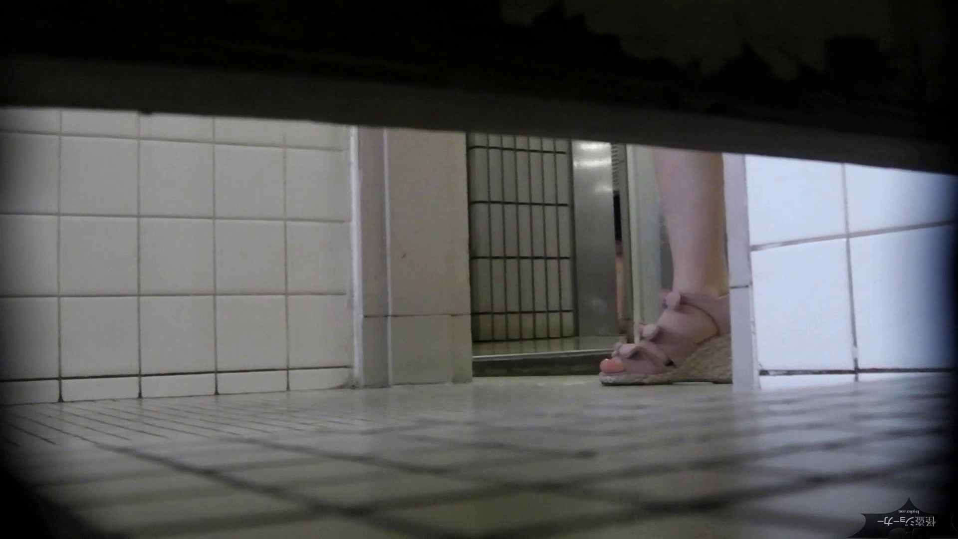 ハメ撮り|【美しき個室な世界】洗面所特攻隊 vol.051|怪盗ジョーカー