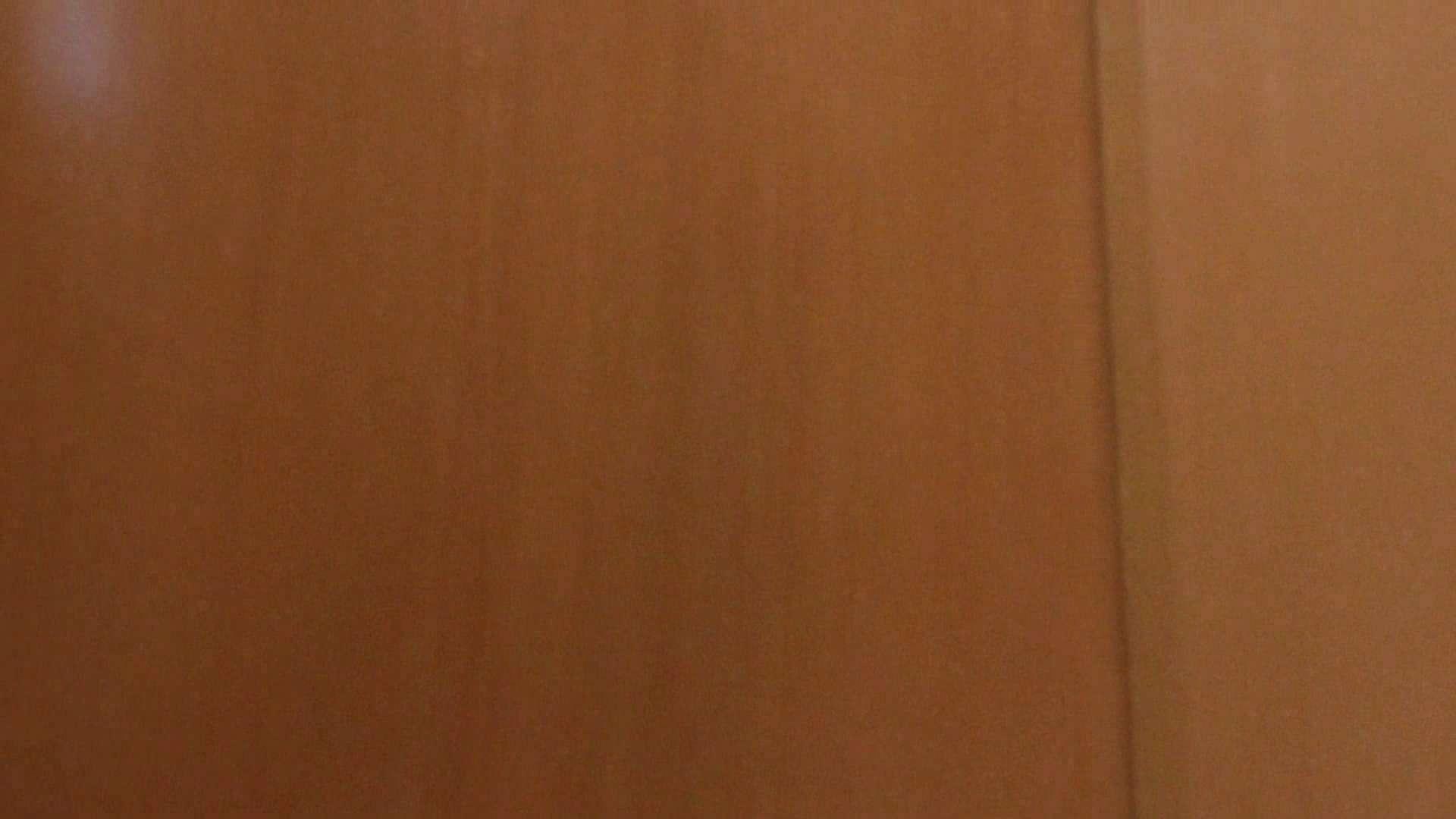 ハメ撮り|隣国化粧室下から御免!! No.02|怪盗ジョーカー