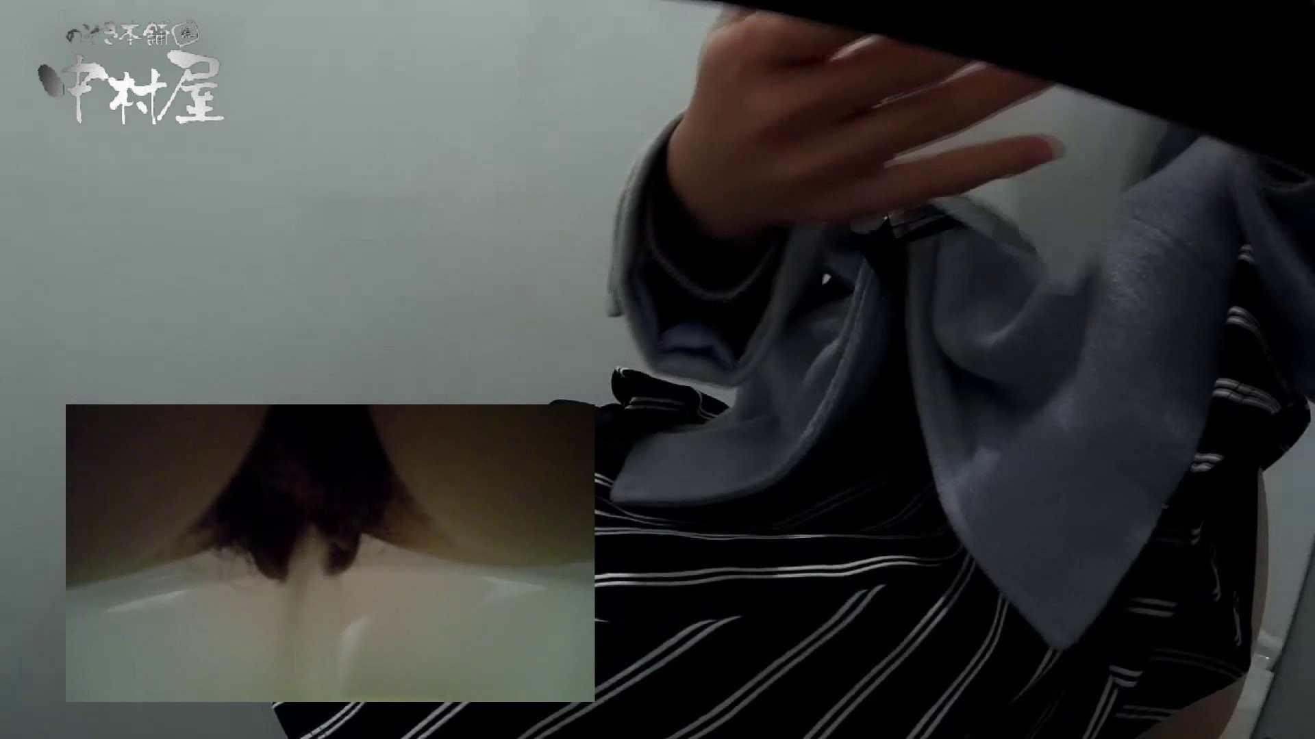 ハメ撮り|有名大学女性洗面所 vol.57 S級美女マルチアングル撮り!!|のぞき本舗 中村屋