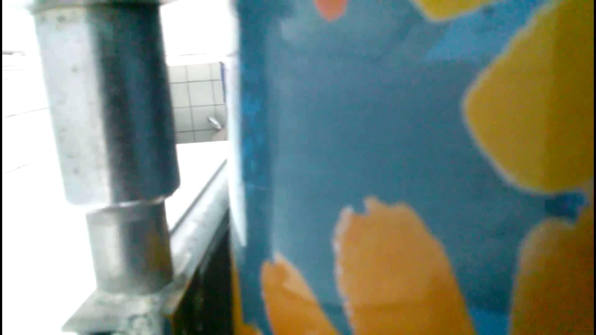 ハメ撮り|潜伏韓国トイレ北緯38度線!Vol.15|のぞき本舗 中村屋