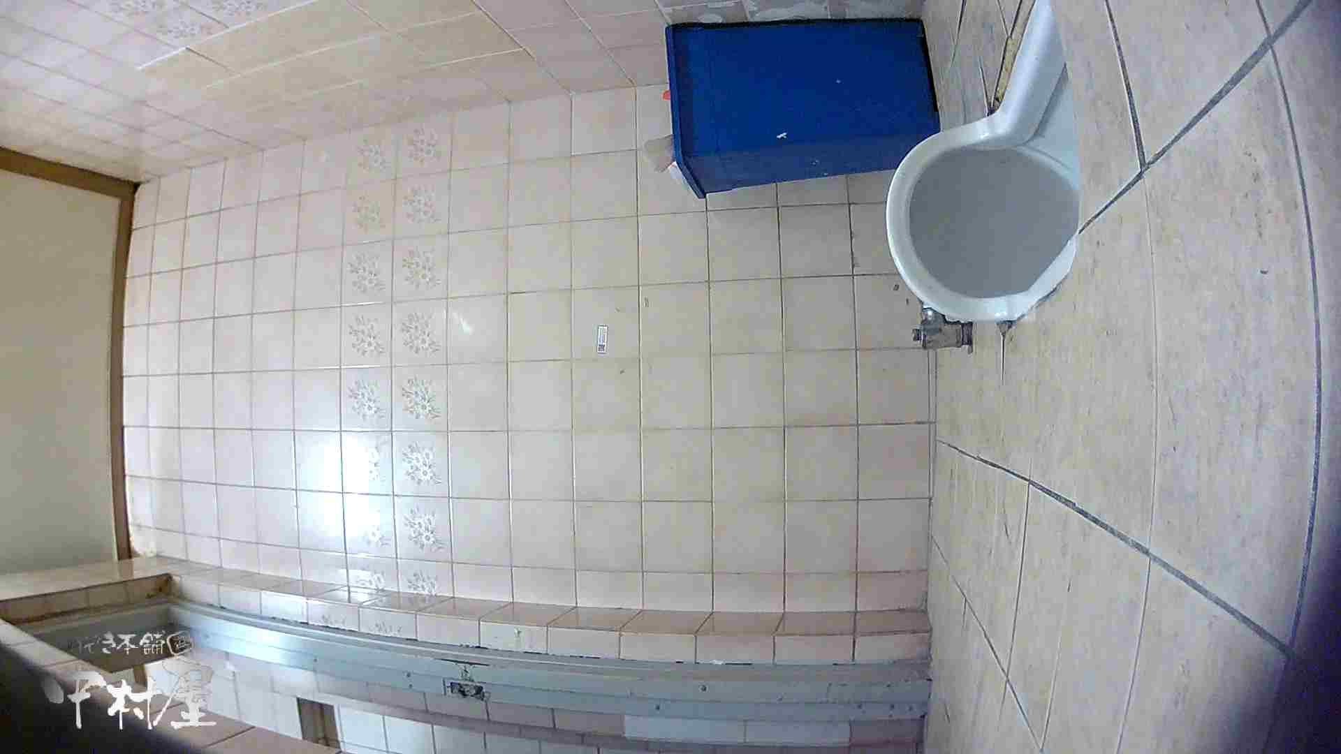 ハメ撮り|韓流トイレ盗撮vol.07|のぞき本舗 中村屋