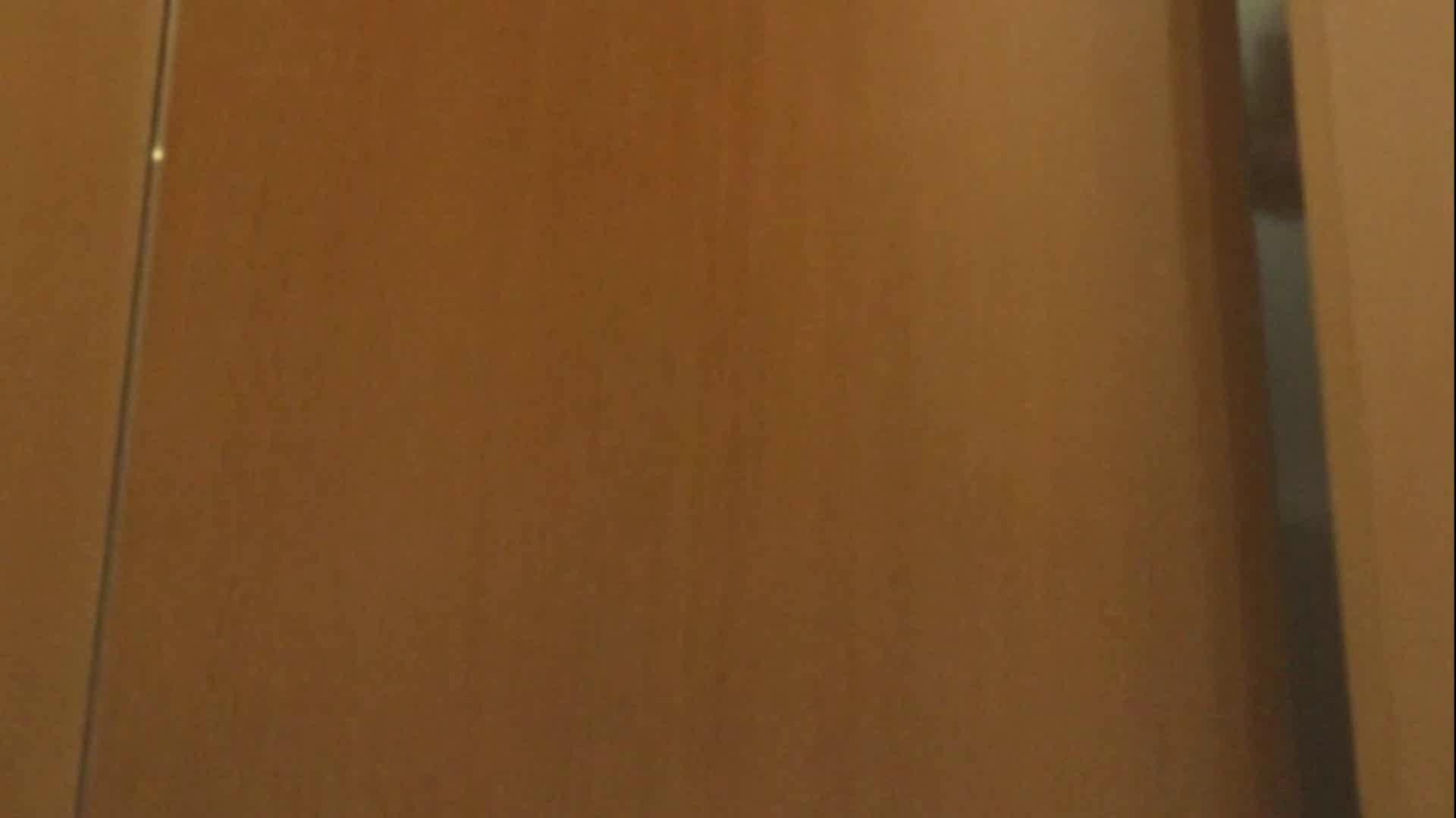 ハメ撮り|「噂」の国の厠観察日記2 Vol.12|のぞき本舗 中村屋