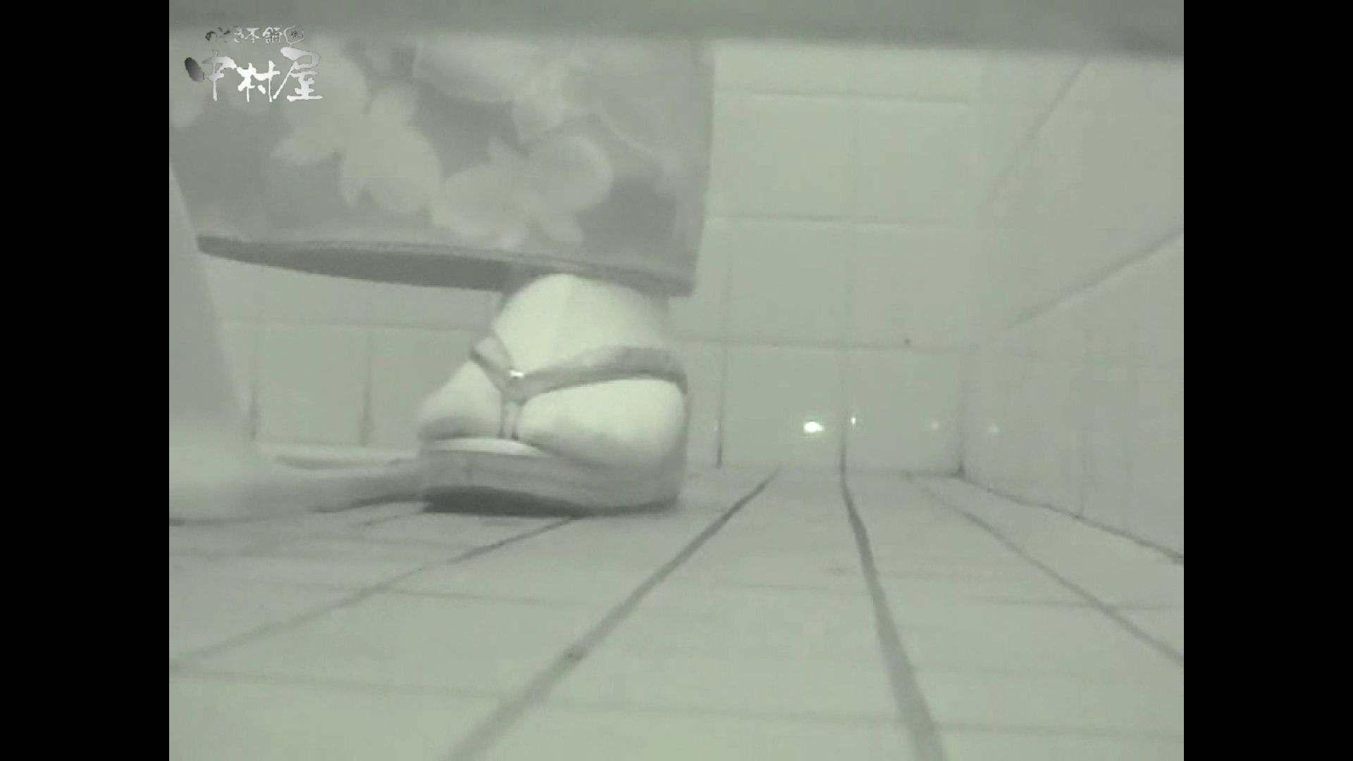 ハメ撮り|女子トイレ盗撮若い嬢編vol.12|のぞき本舗 中村屋