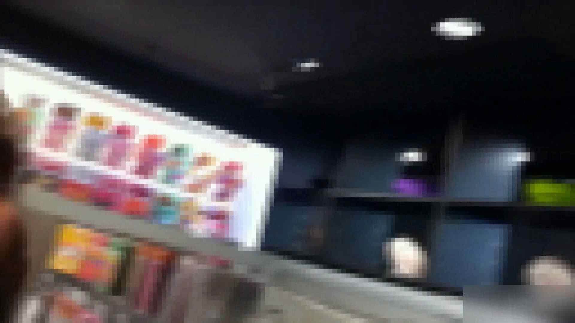 ガールズパンチラストリートビューVol.013 パンチラのぞき 性交動画流出 101画像 63