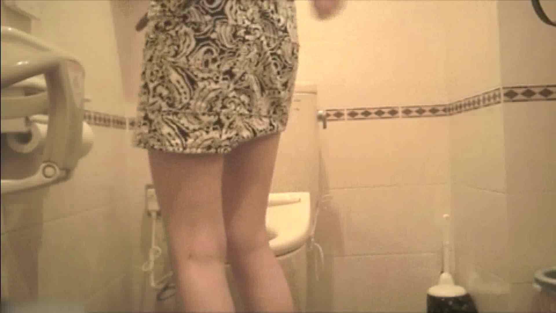 ハメ撮り 実録!!綺麗なお姉さんのトイレ事情・・・。vol.20 ピープフォックス(盗撮狐)