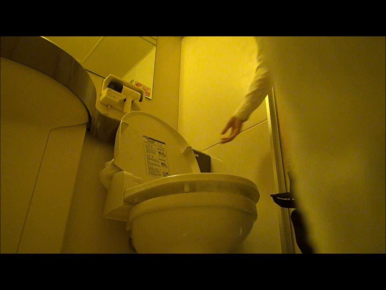 ハメ撮り 魔術師の お・も・て・な・し vol.56 JDの洗面所を観察してみた ピープフォックス(盗撮狐)