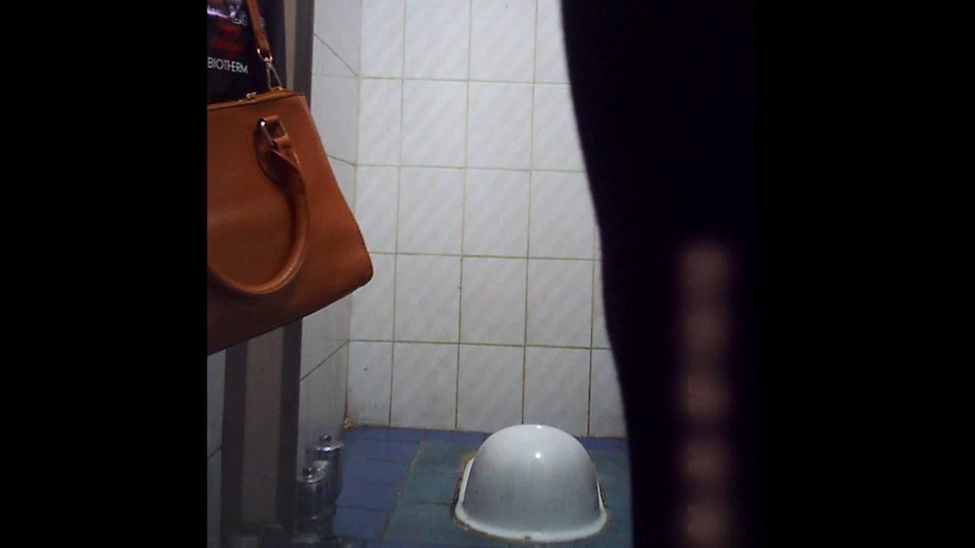 潜入!!韓国秘密のトイレ!Vol.12 女子トイレ ぱこり動画紹介 55画像 14
