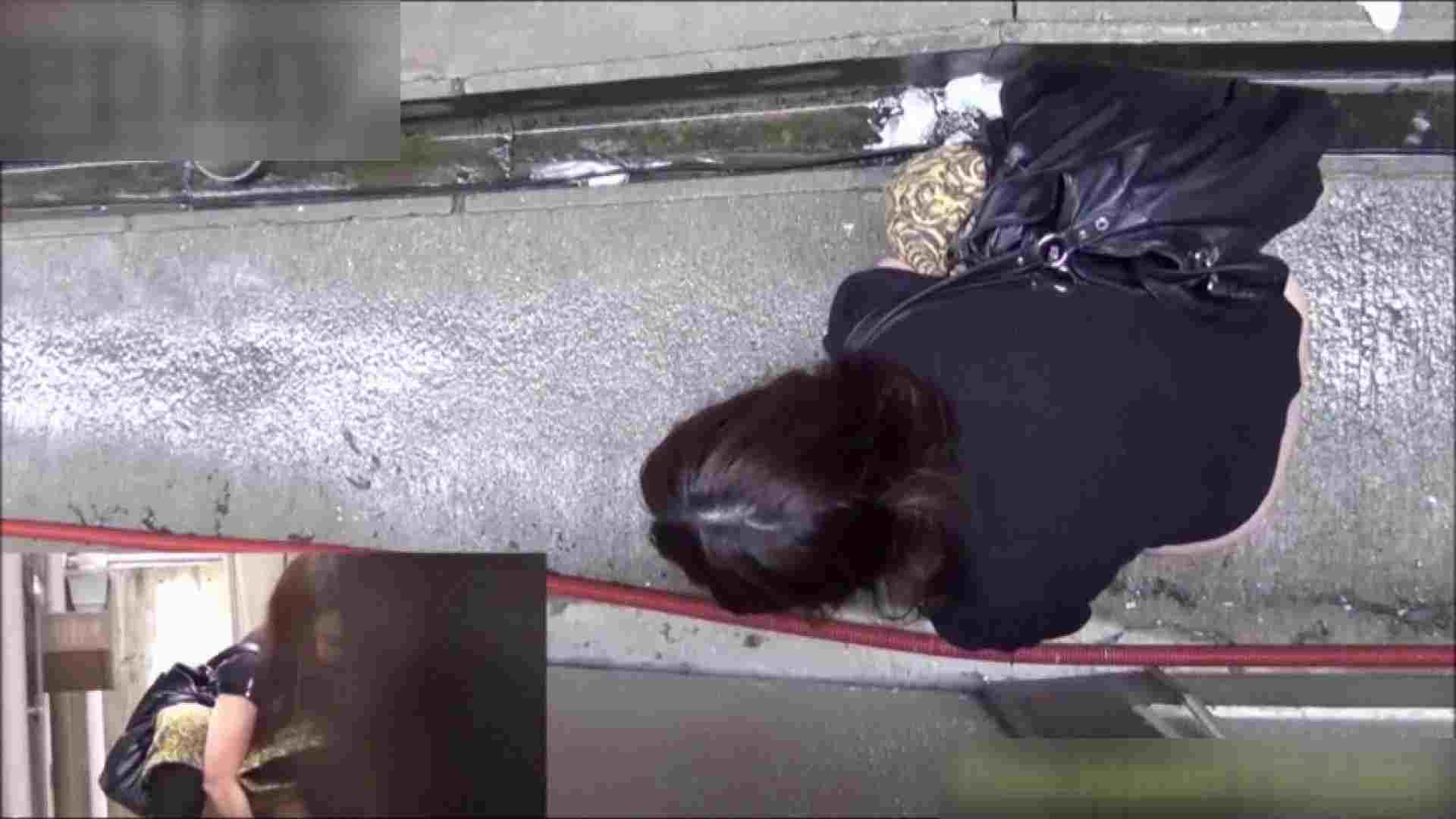洗面所盗撮~隣の美人お姉さんVol.10 レディのうんこ 盗撮動画紹介 63画像 62