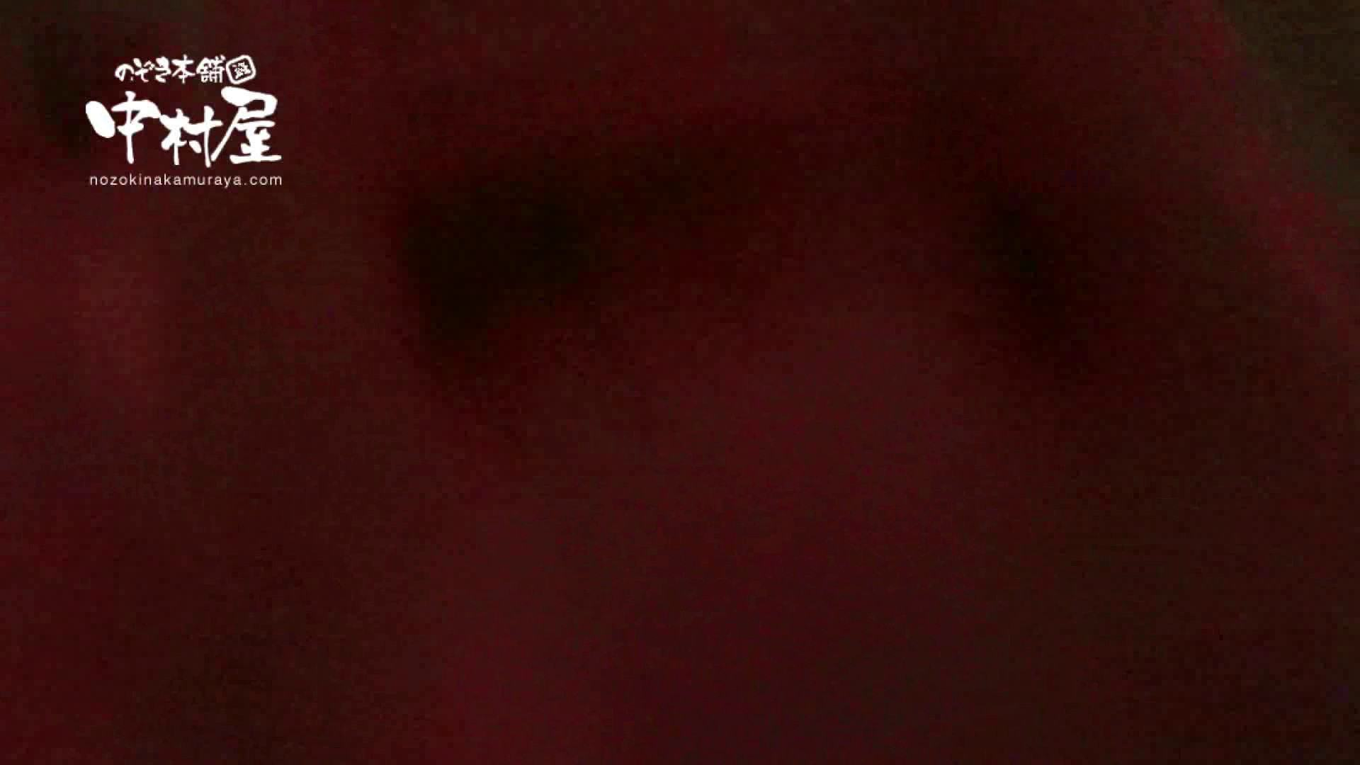 ハメ撮り|鬼畜 vol.02 もうやめて! 前編|ピープフォックス(盗撮狐)