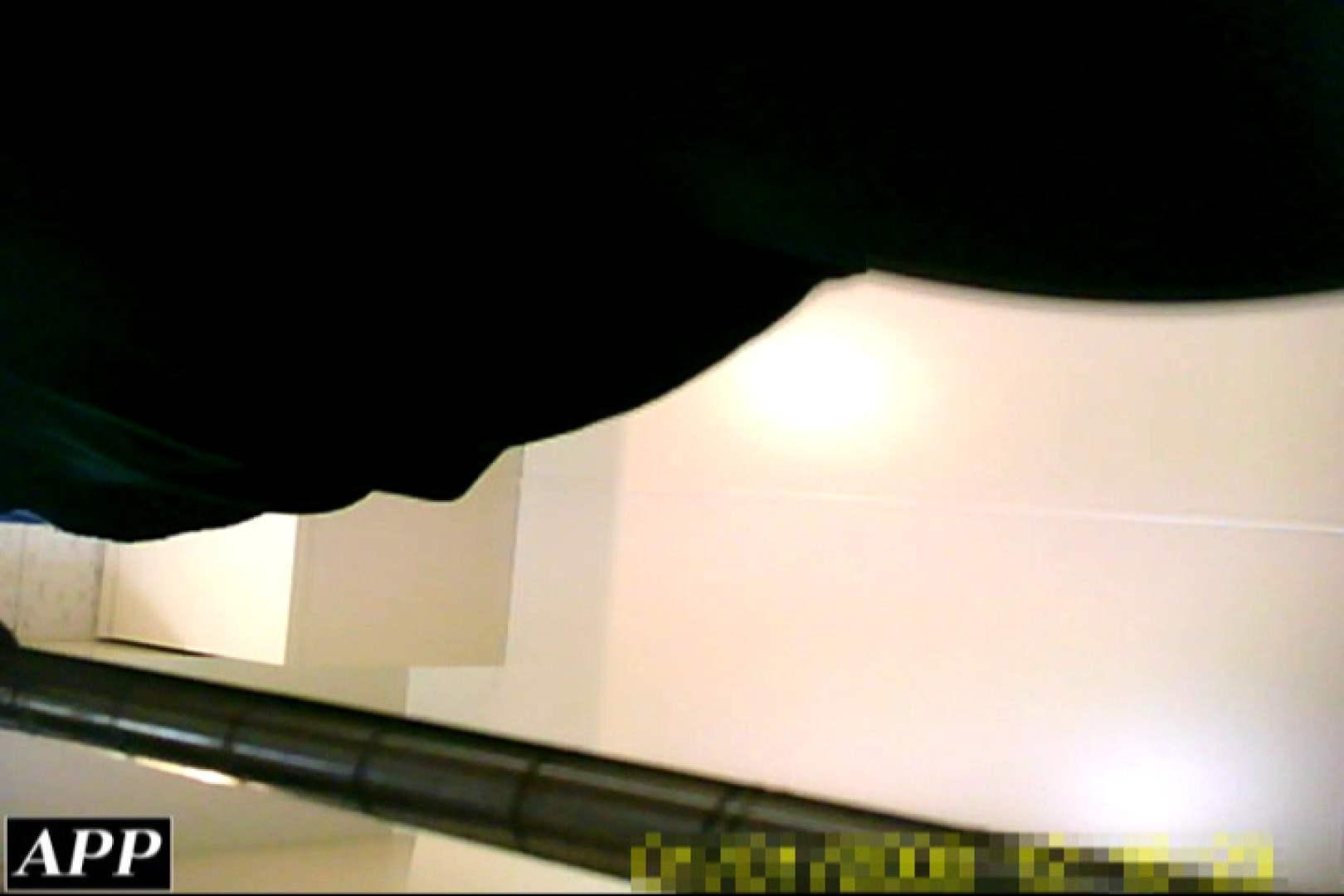 ハメ撮り|3視点洗面所 vol.021|ピープフォックス(盗撮狐)