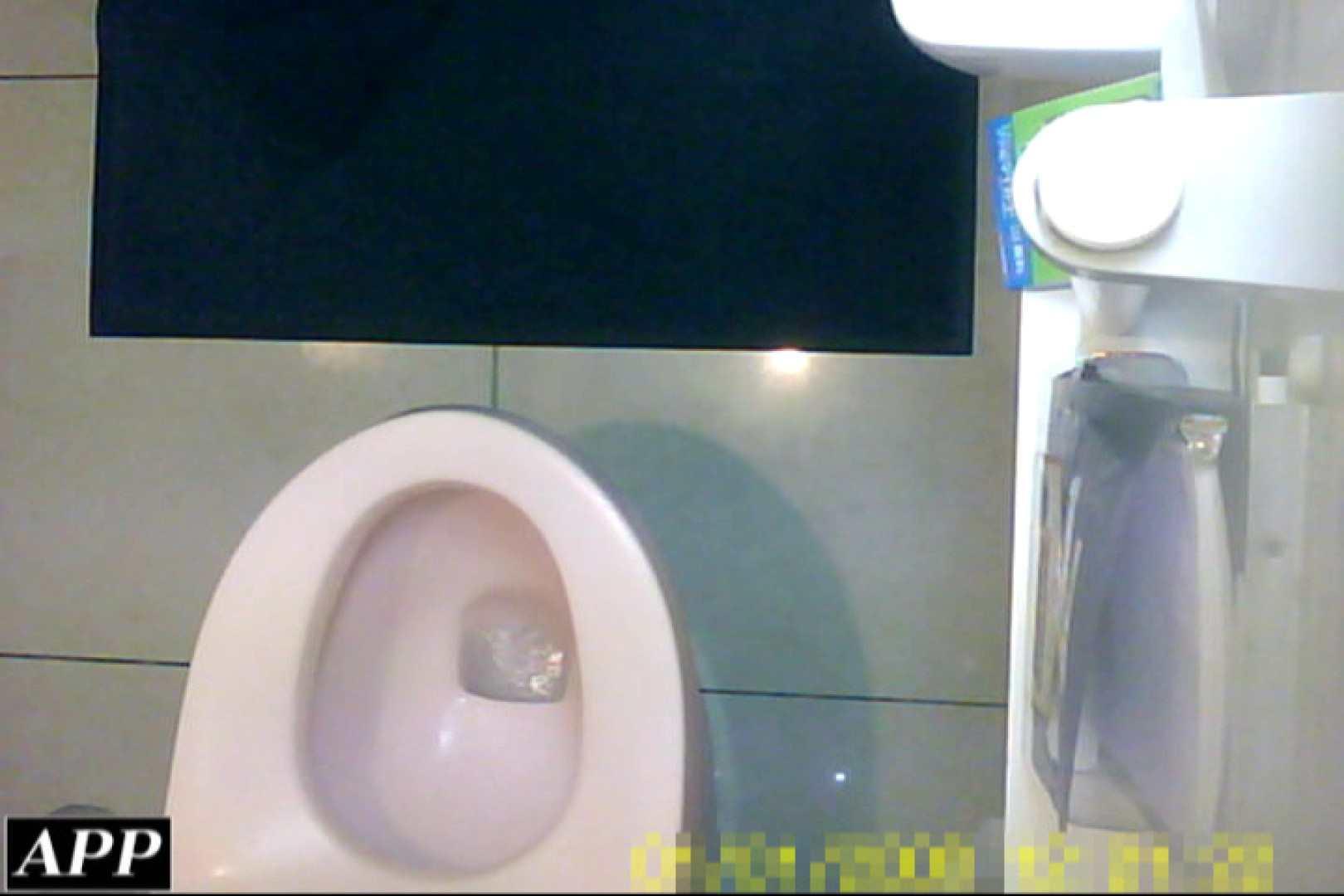 ハメ撮り|3視点洗面所 vol.039|ピープフォックス(盗撮狐)