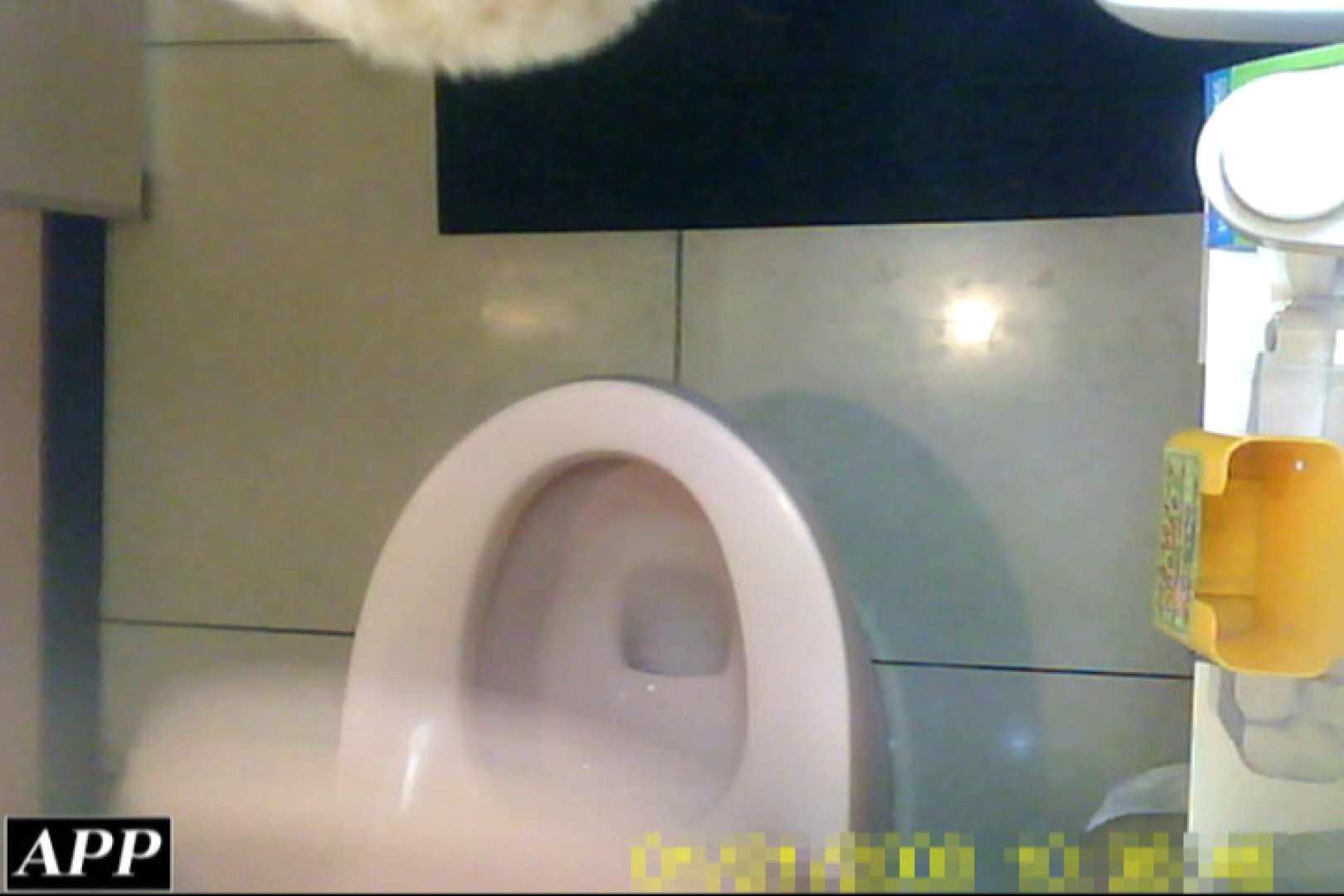 3視点洗面所 vol.053 洗面所はめどり  103画像 22