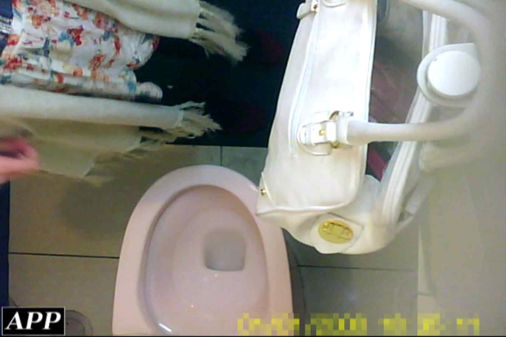 3視点洗面所 vol.053 洗面所はめどり  103画像 48