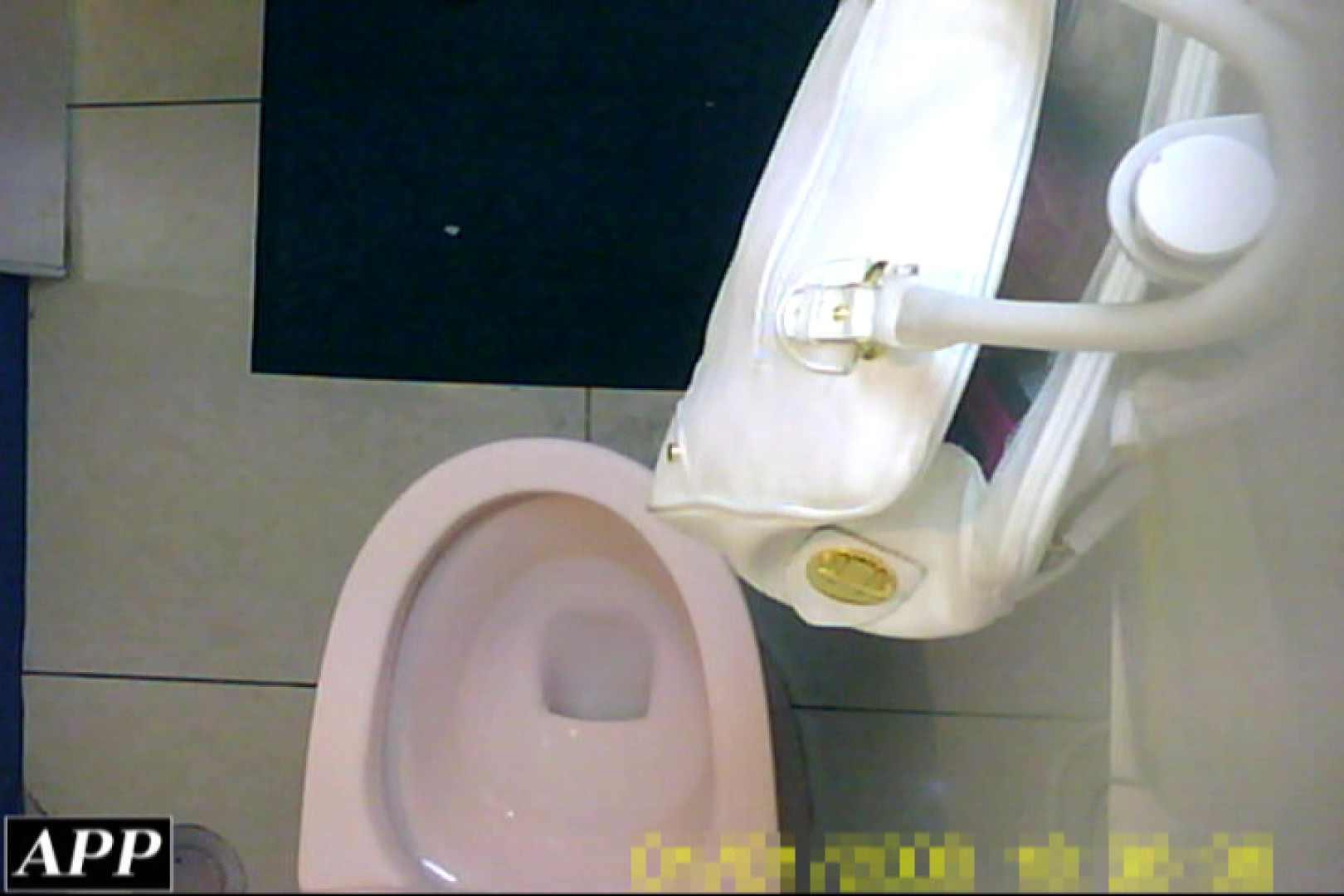 3視点洗面所 vol.053 洗面所はめどり | エロティックなOL  103画像 63
