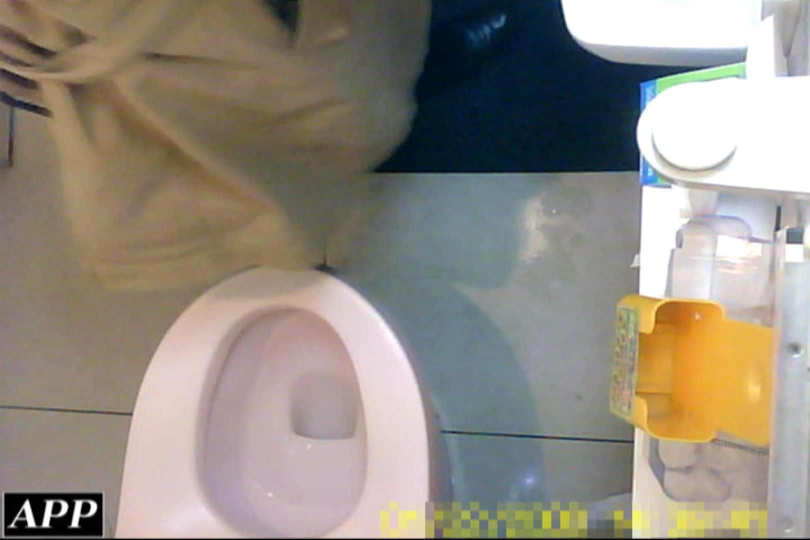 3視点洗面所 vol.055 洗面所はめどり  79画像 20