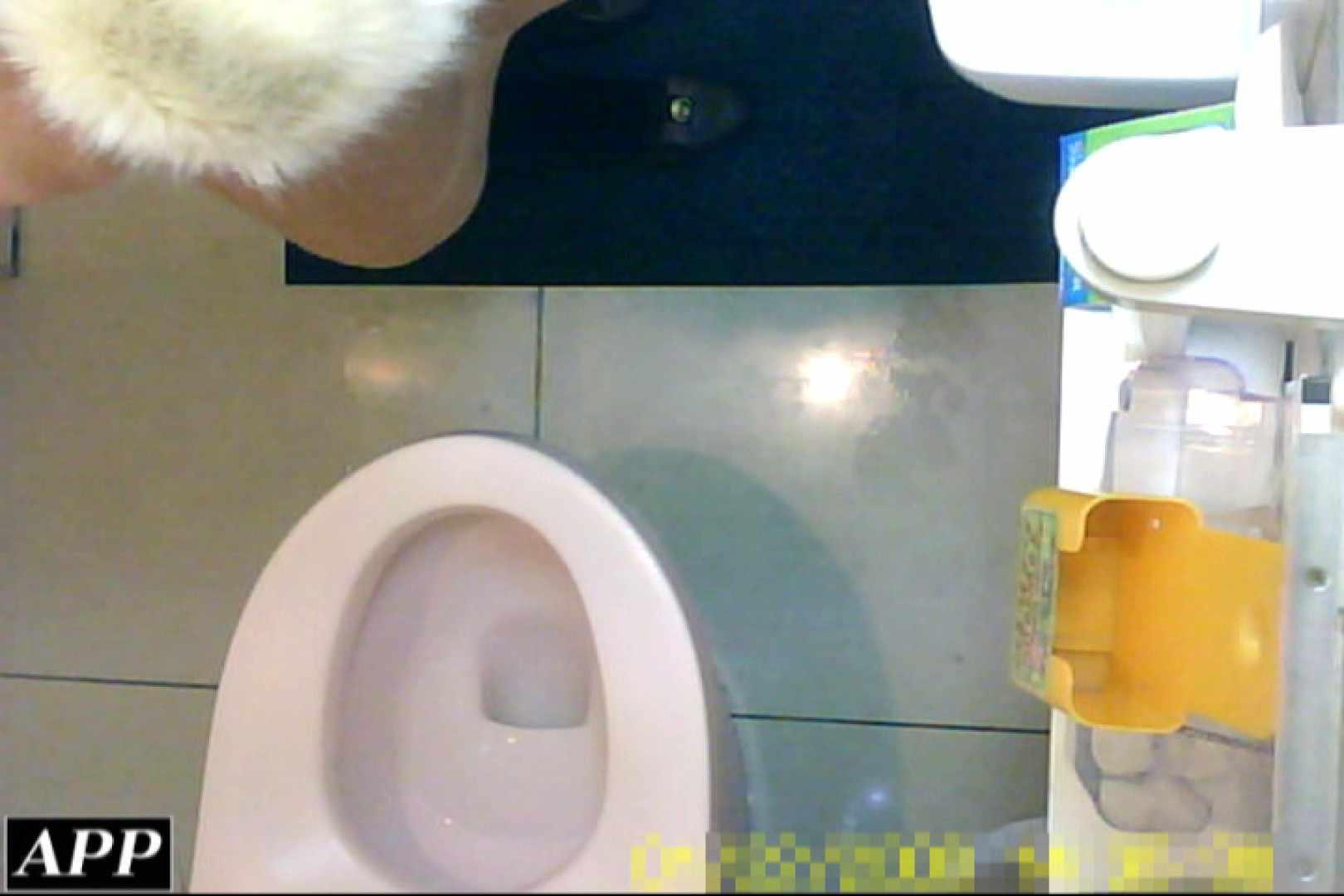 3視点洗面所 vol.055 洗面所はめどり  79画像 40
