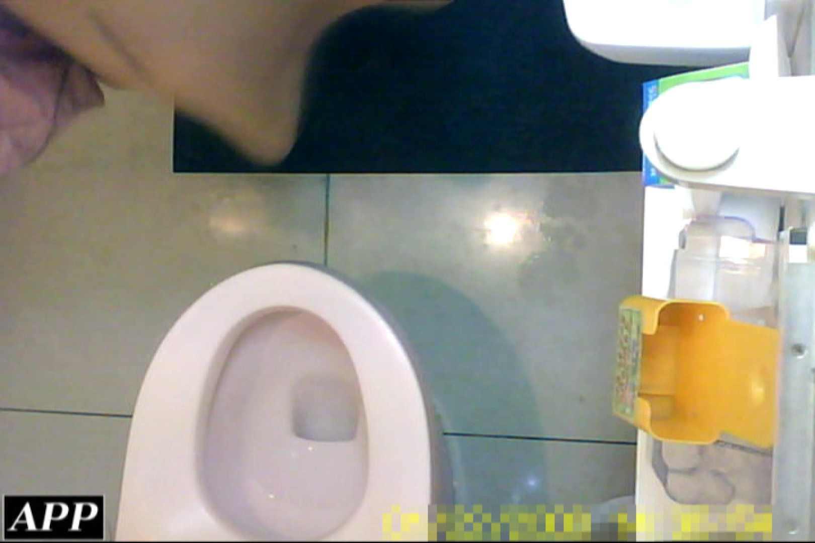 3視点洗面所 vol.055 洗面所はめどり  79画像 42
