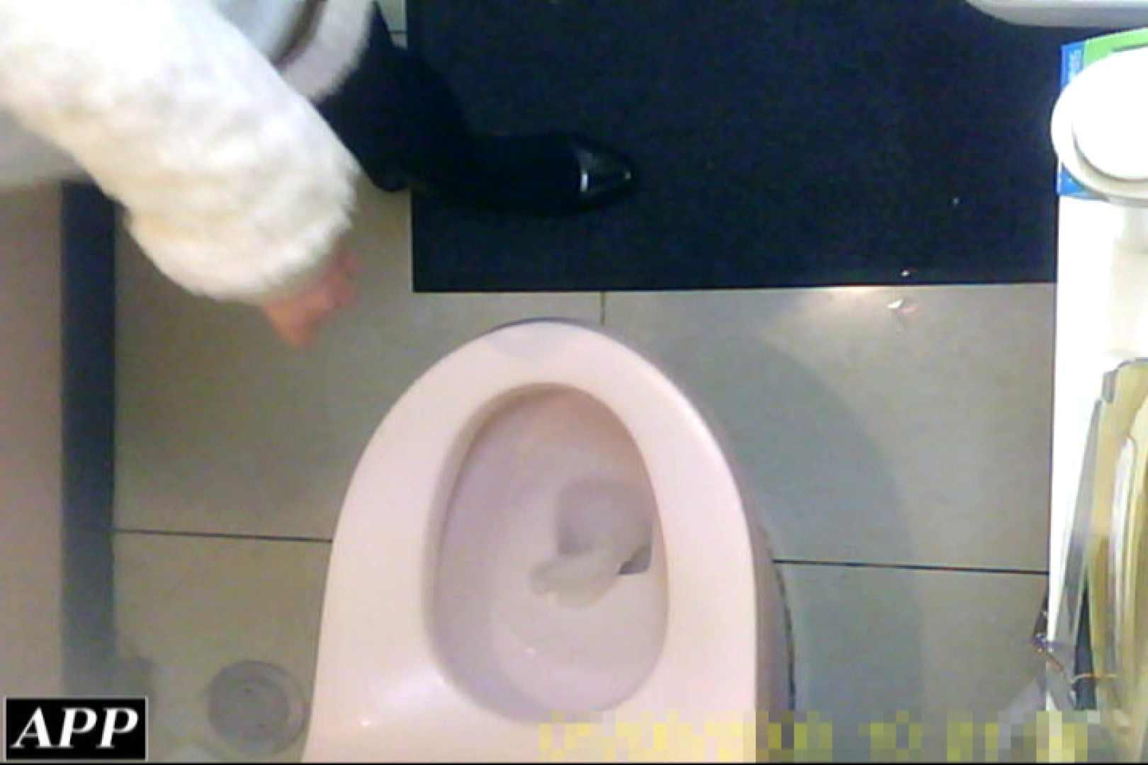 3視点洗面所 vol.057 洗面所はめどり  77画像 34