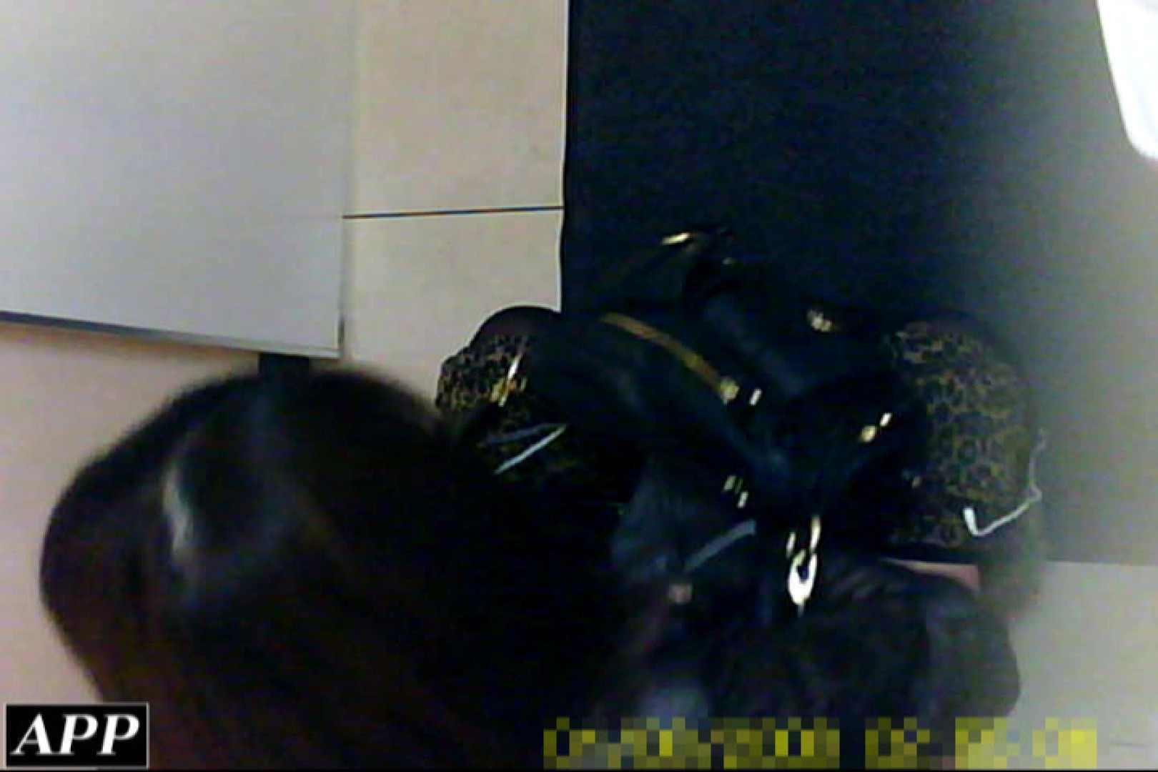 3視点洗面所 vol.086 洗面所はめどり  71画像 12
