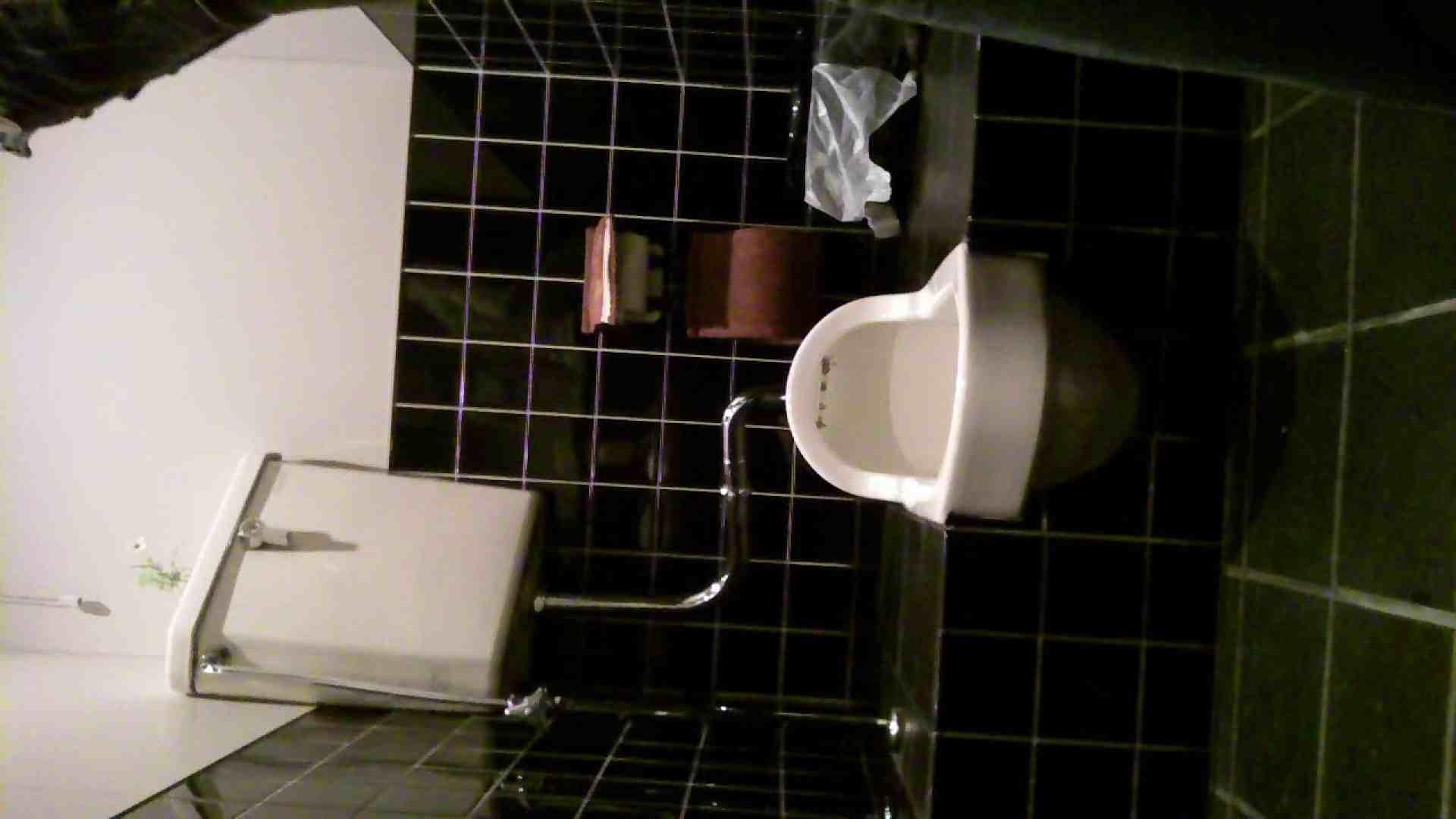 美女の集まる飲み屋洗面所 vol.01 洗面所はめどり | 美女のヌード  74画像 43