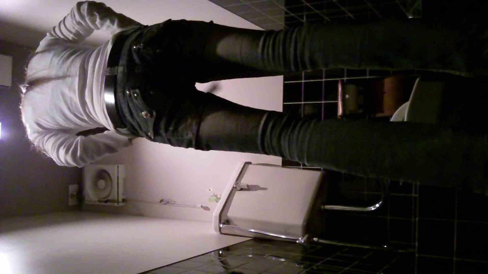 ハメ撮り|美女の集まる飲み屋洗面所 vol.01|ピープフォックス(盗撮狐)
