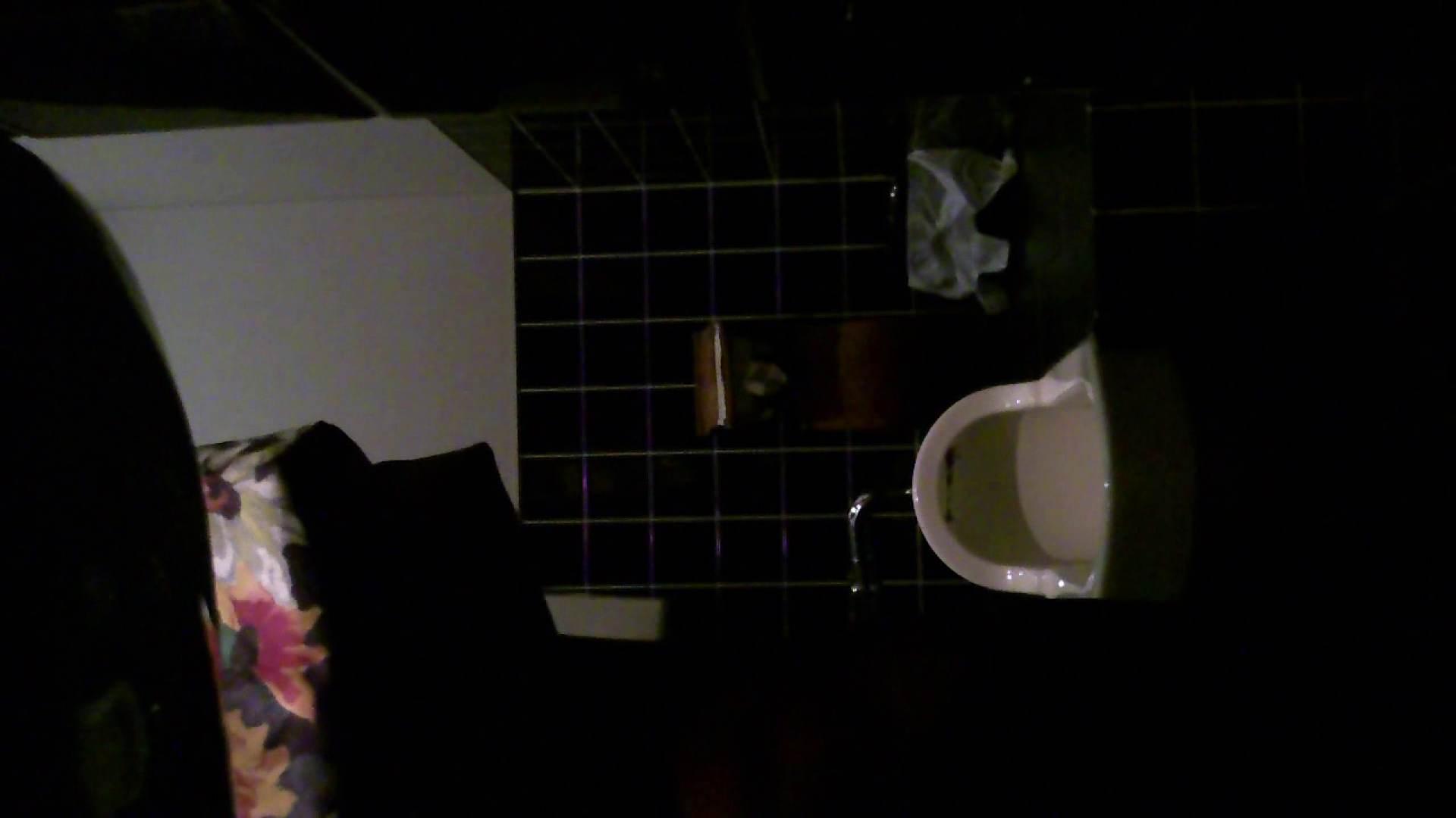 美女の集まる飲み屋洗面所 vol.04 美女のヌード おまんこ無修正動画無料 76画像 66