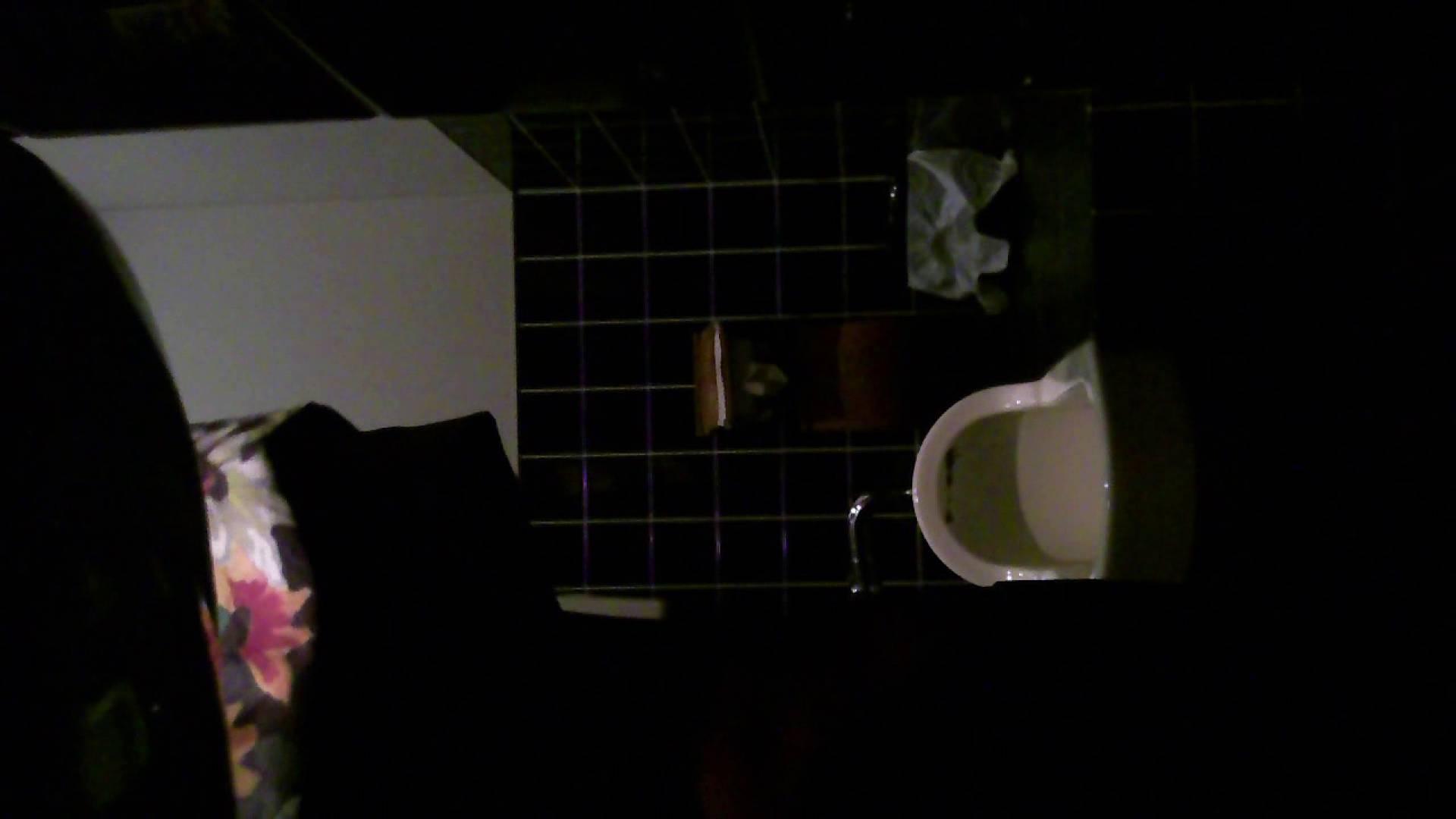 美女の集まる飲み屋洗面所 vol.04 エロティックなOL  76画像 68