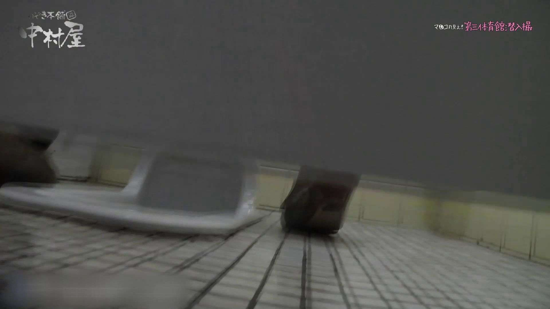 ハメ撮り|第三体育館File044長身のバレー部員が目の前の個室に入ってくれました。前編|ピープフォックス(盗撮狐)
