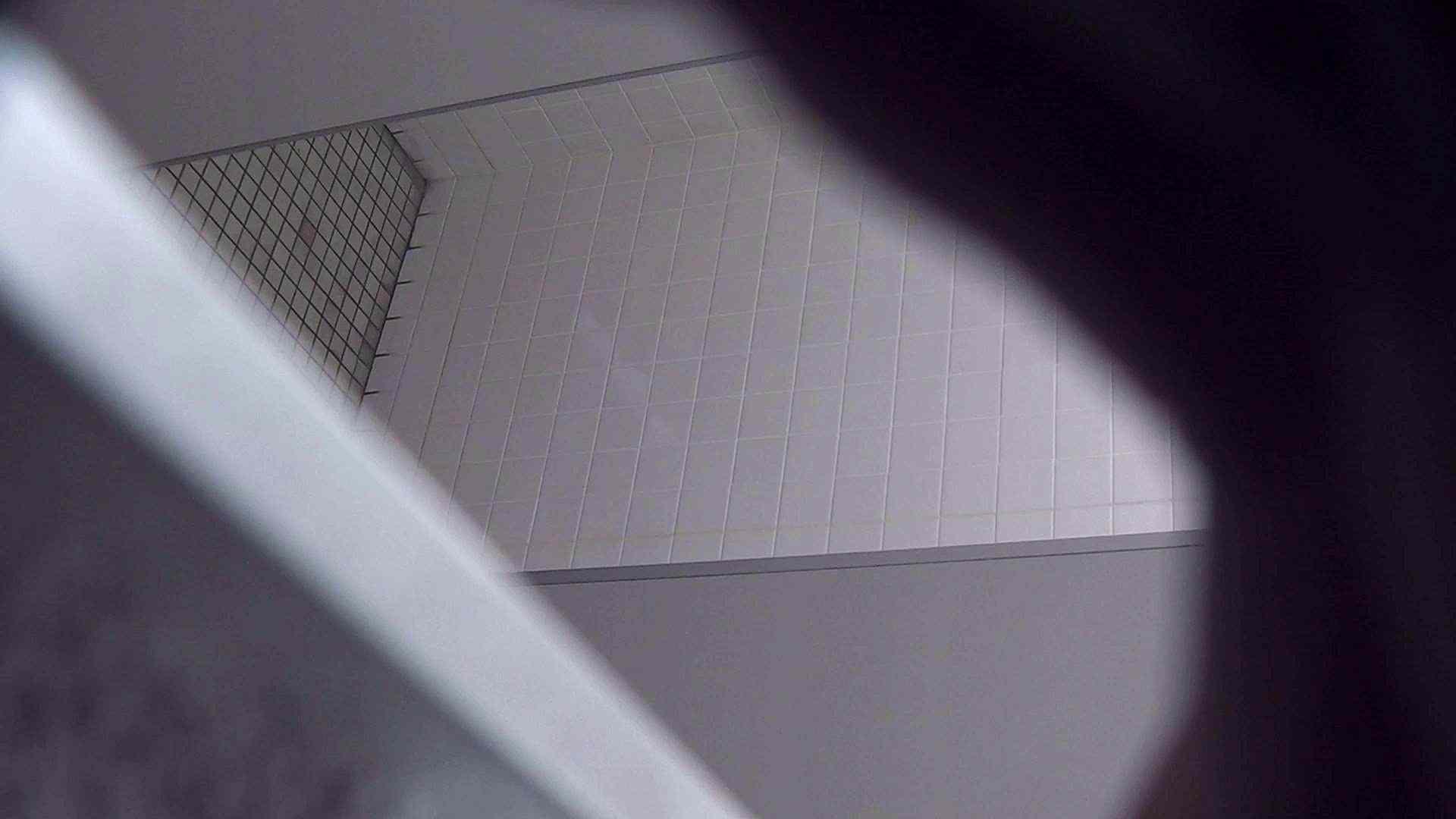 ハメ撮り|vol.04 命がけ潜伏洗面所! オシリのお肌が荒れ気味ですか?|ピープフォックス(盗撮狐)