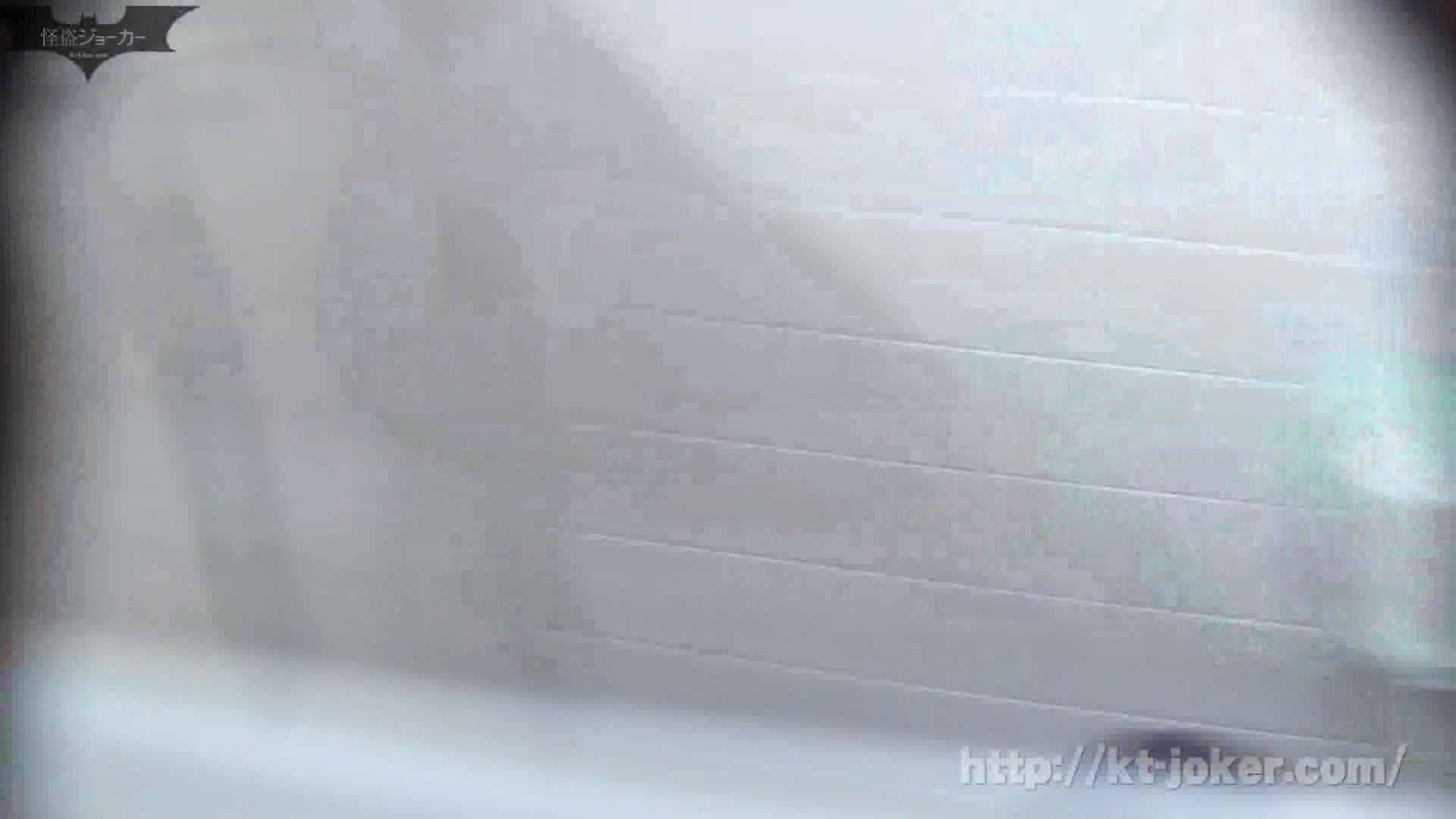 命がけ潜伏洗面所! vol.49 高値更新!EUで育った日本人 洗面所はめどり  98画像 78