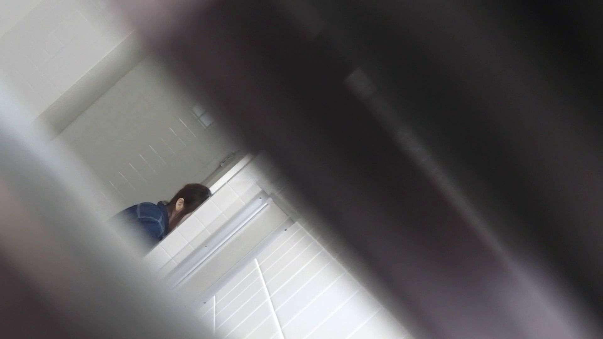 ハメ撮り|vol.11 命がけ潜伏洗面所! 多い日は大変です。|ピープフォックス(盗撮狐)