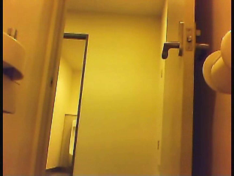 漏洩厳禁!!某王手保険会社のセールスレディーの洋式洗面所!!Vol.1 洗面所はめどり  66画像 44