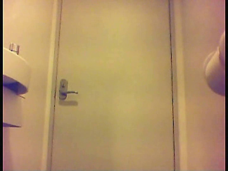 漏洩厳禁!!某王手保険会社のセールスレディーの洋式洗面所!!Vol.4 洗面所はめどり のぞき動画キャプチャ 76画像 30