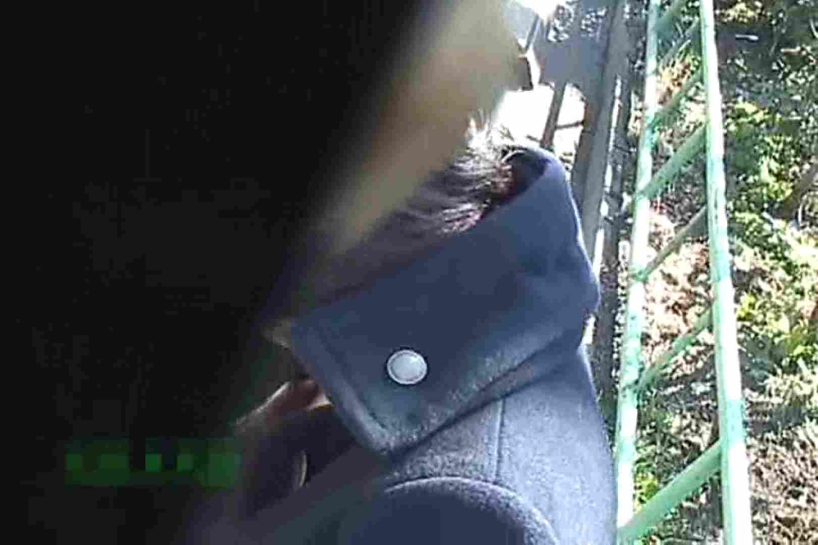 ハメ撮り|徘徊撮り!!街で出会った乳首たちVol.3|ピープフォックス(盗撮狐)