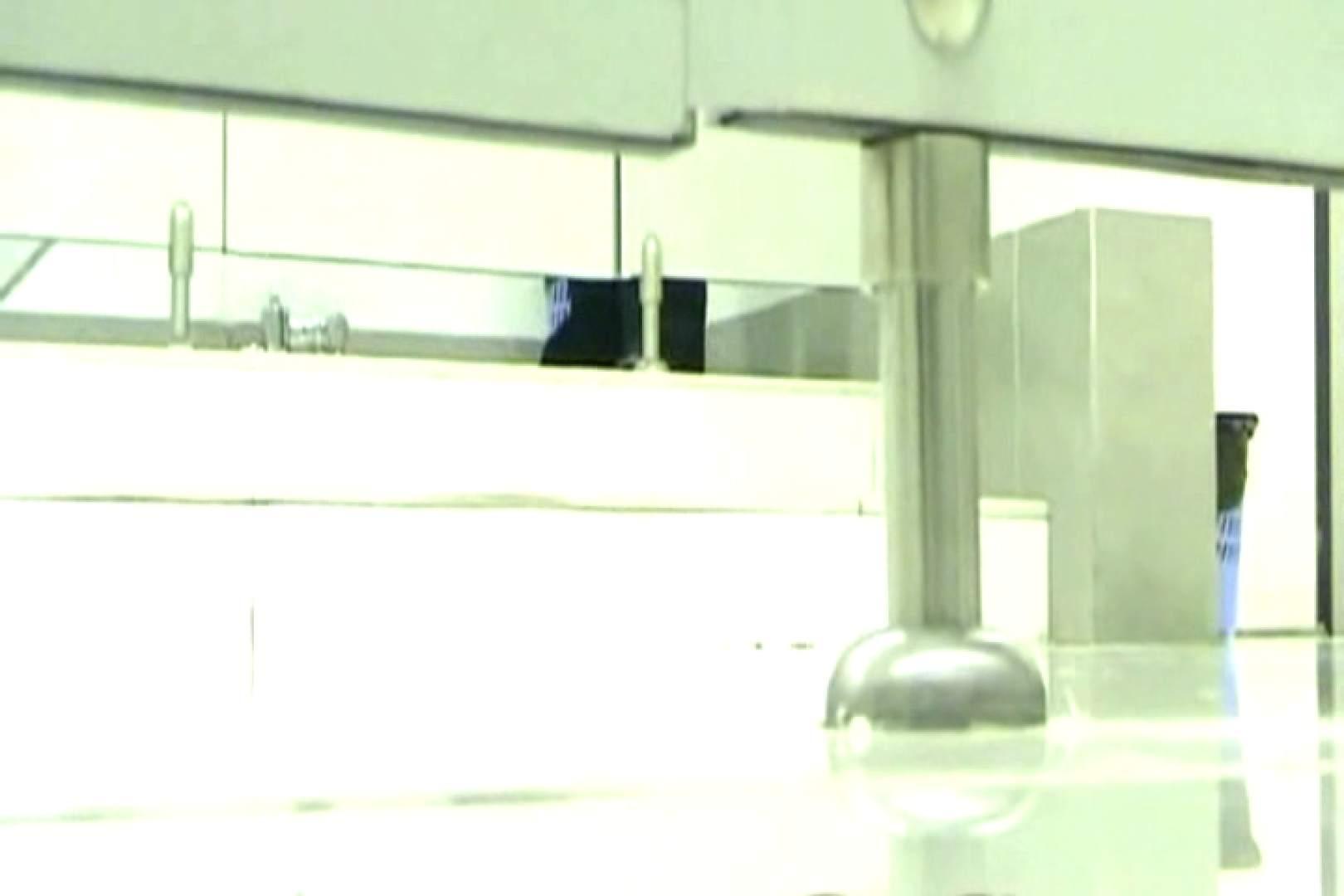 ハメ撮り|ぼっとん洗面所スペシャルVol.2|ピープフォックス(盗撮狐)