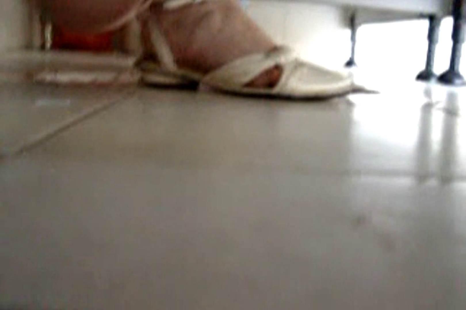 ぼっとん洗面所スペシャルVol.5 洗面所はめどり 性交動画流出 68画像 68