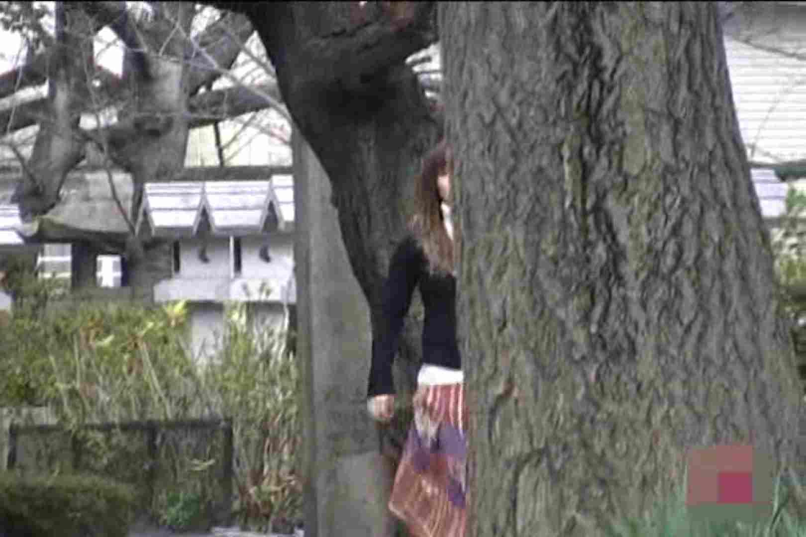 検証!隠し撮りスカートめくり!!Vol.7 ワルノリ  78画像 42