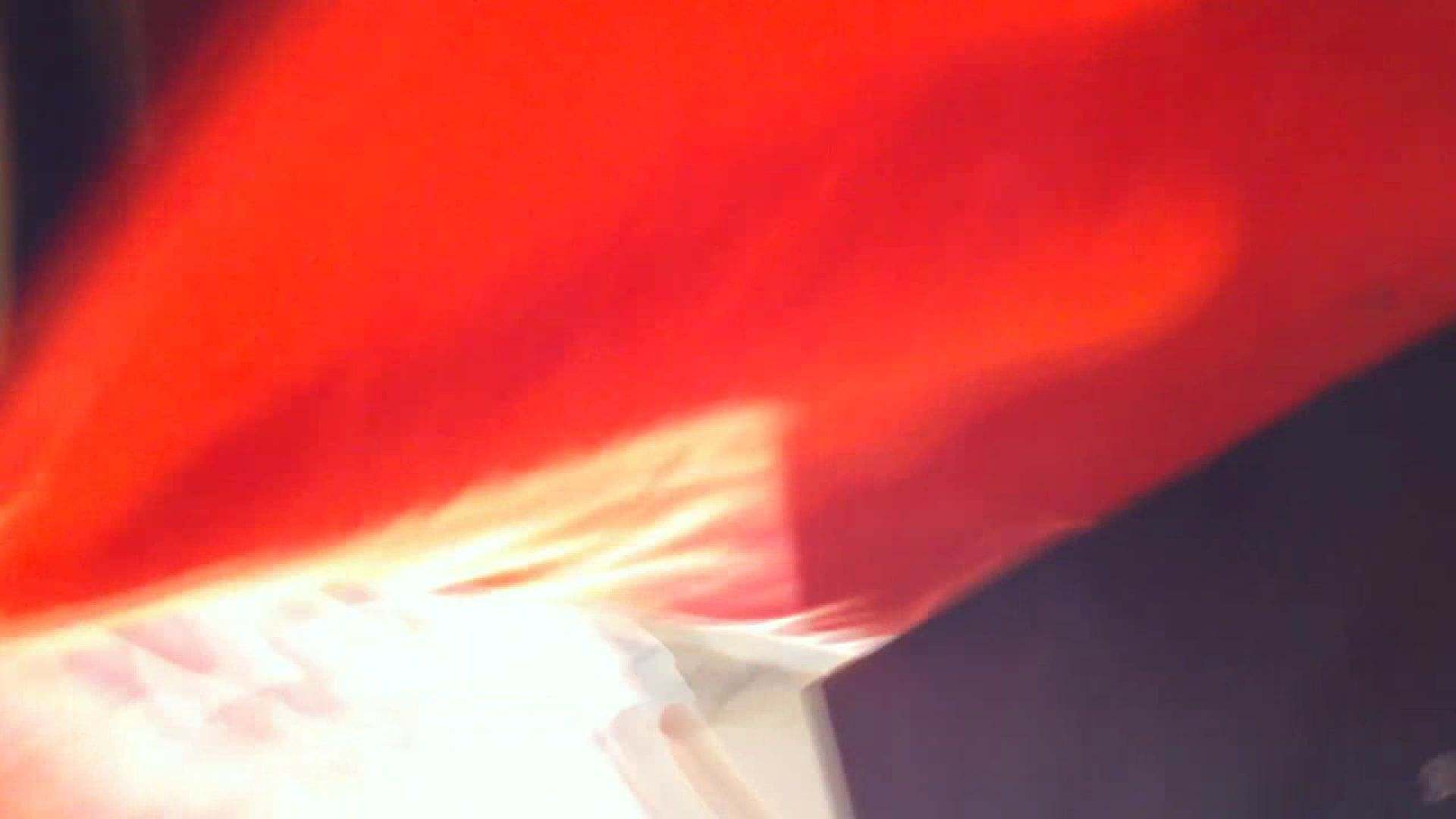 フルHD ショップ店員千人斬り! 大画面ノーカット完全版 vol.16 パンチラのぞき | 胸チラ  66画像 57